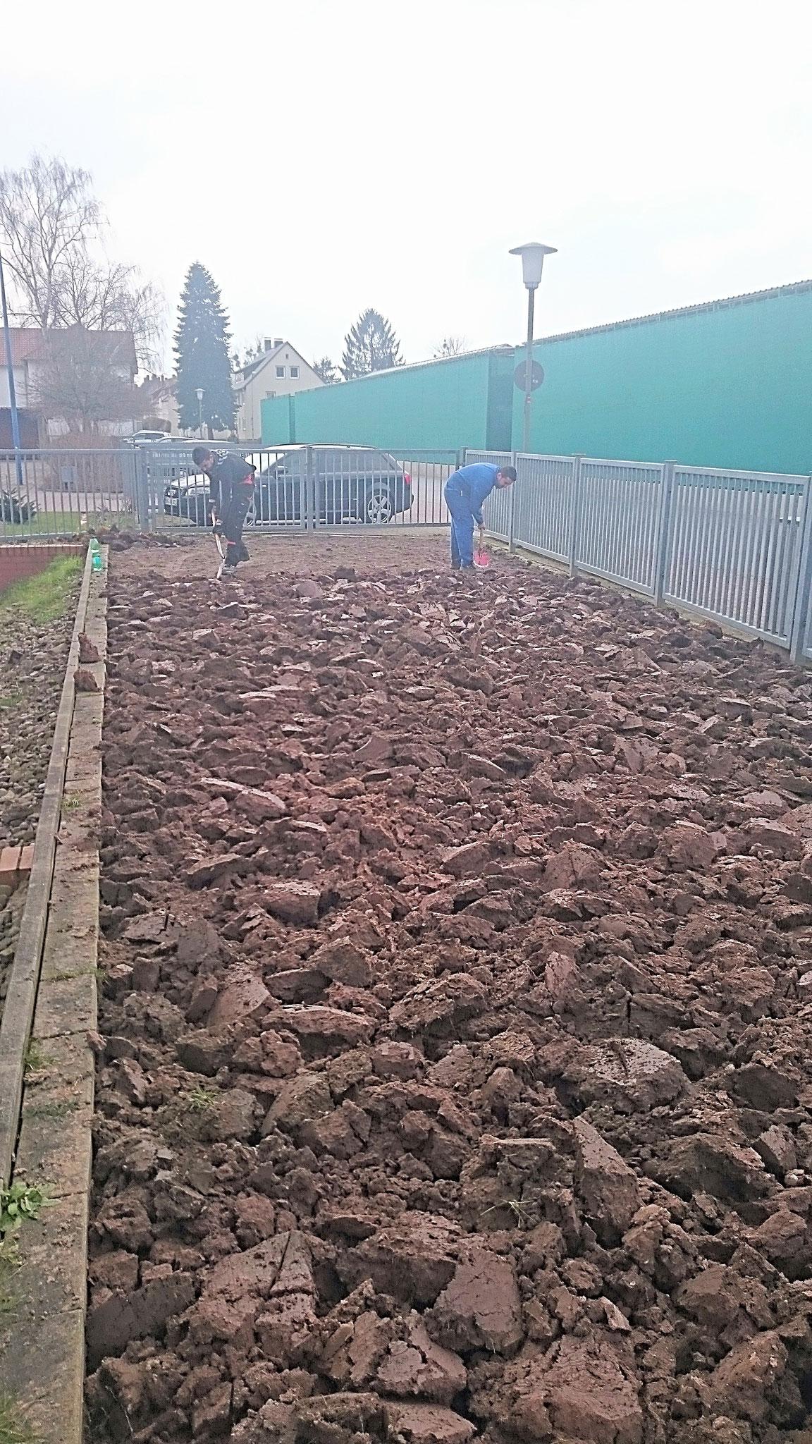 fast 115 Quadratmeter Rasenfläche wurde links- und rechtsseitig des Einganges zur Geschäftsstelle wurden entfernt und der Boden umgegraben - Foto: Britta Raabe
