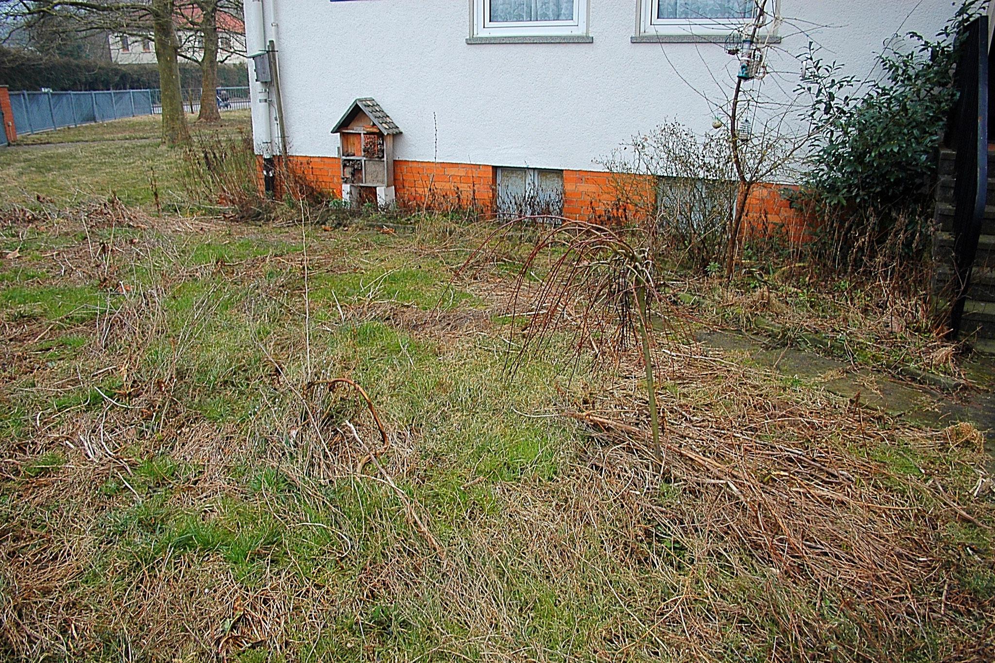 Der Garten links vom Eingang -> Zustand nach dem vergangenen Sommer (Januar) - Foto: Britta Raabe