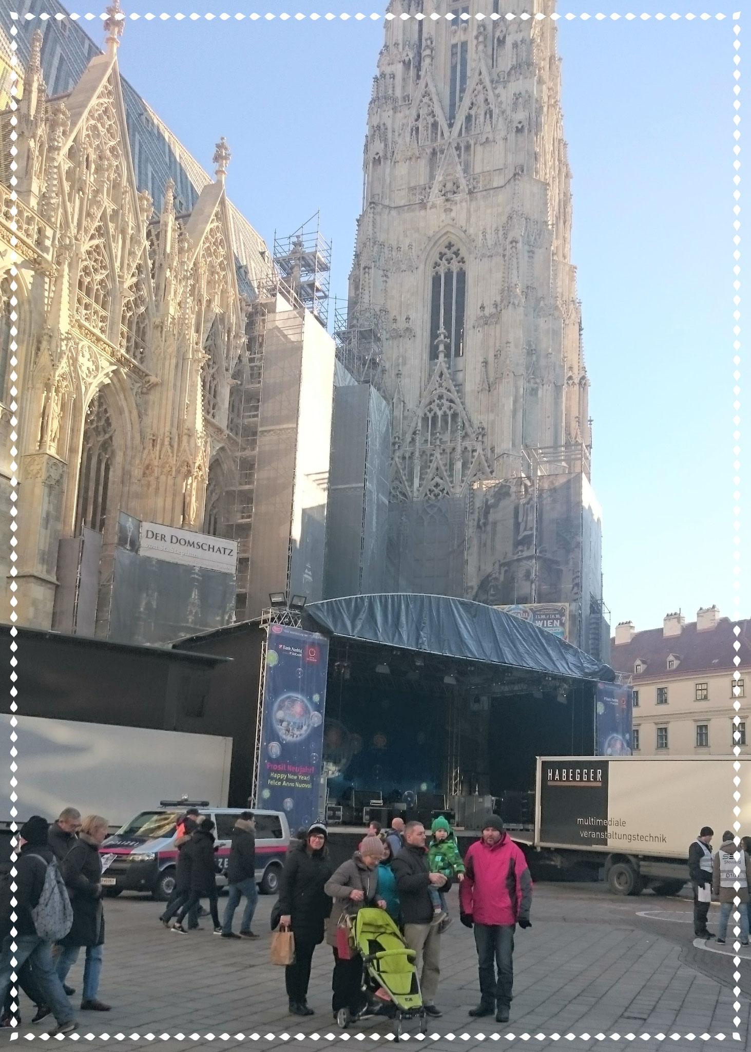 Am nächsten Tag, gefrorenes Sightseeing in Wien.