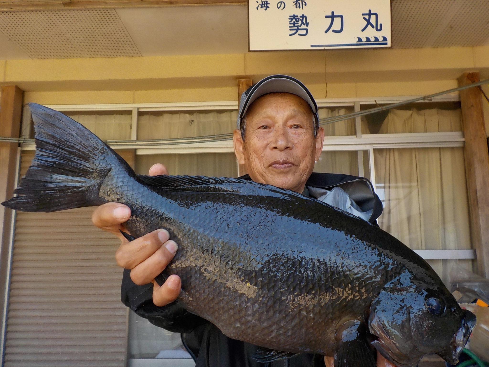 4月18日 フカセ釣りで片岡さん 良型クロ48㎝・1.88kg