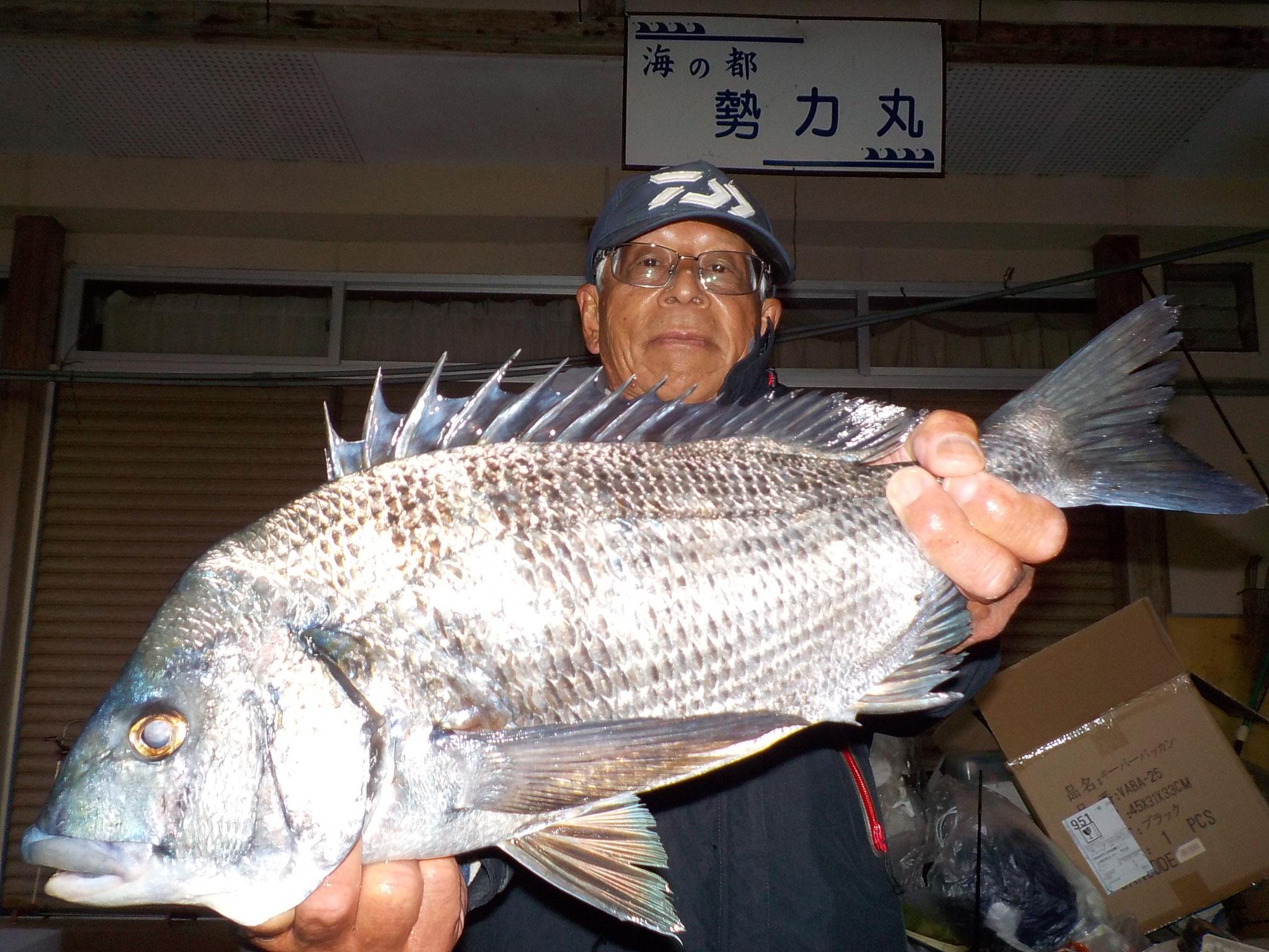 12月26日 磯釣りで前田さん ガバチヌ50cm