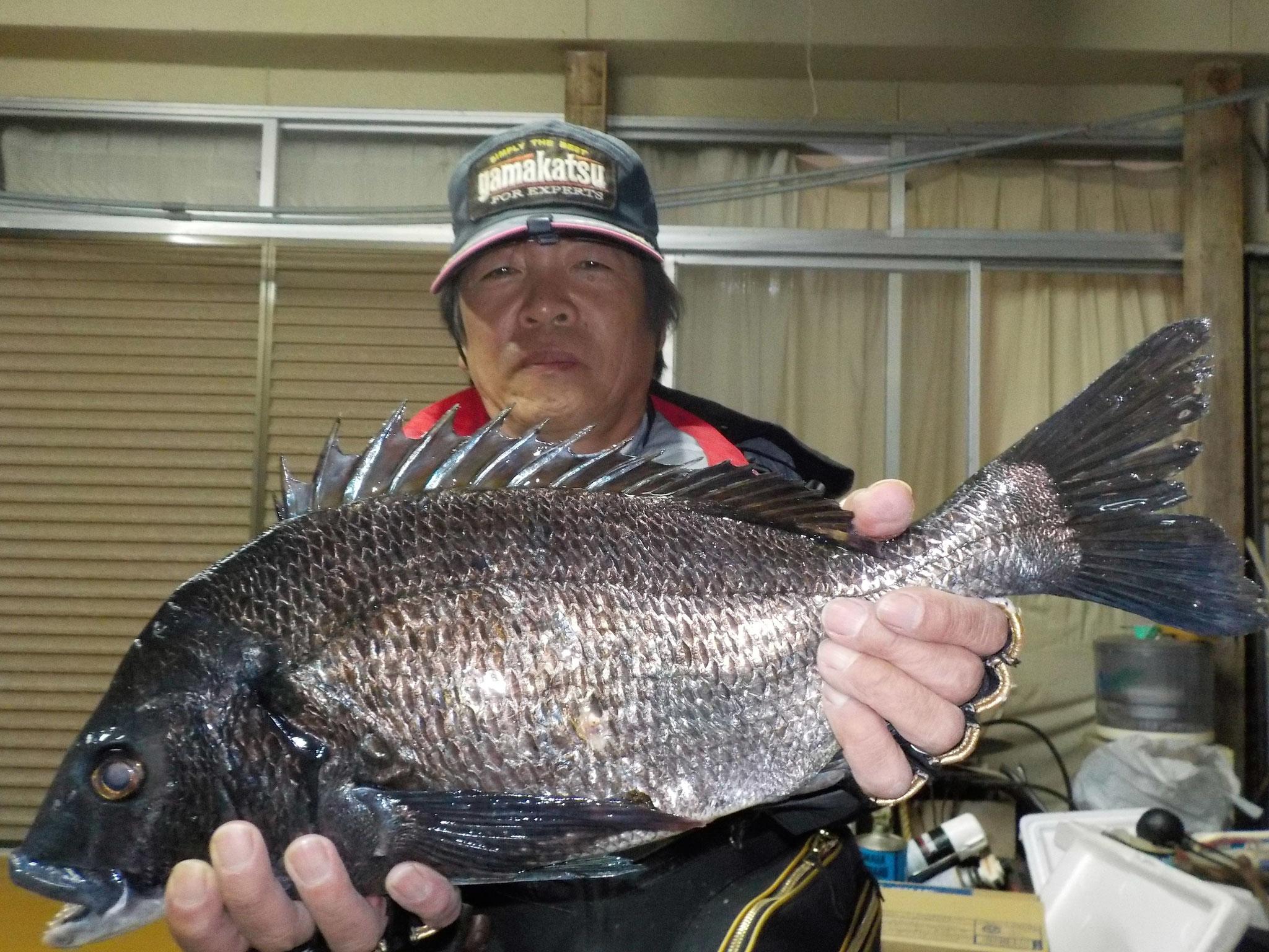 4月8日 磯釣りで瀬口さん ガバチン50.2㎝