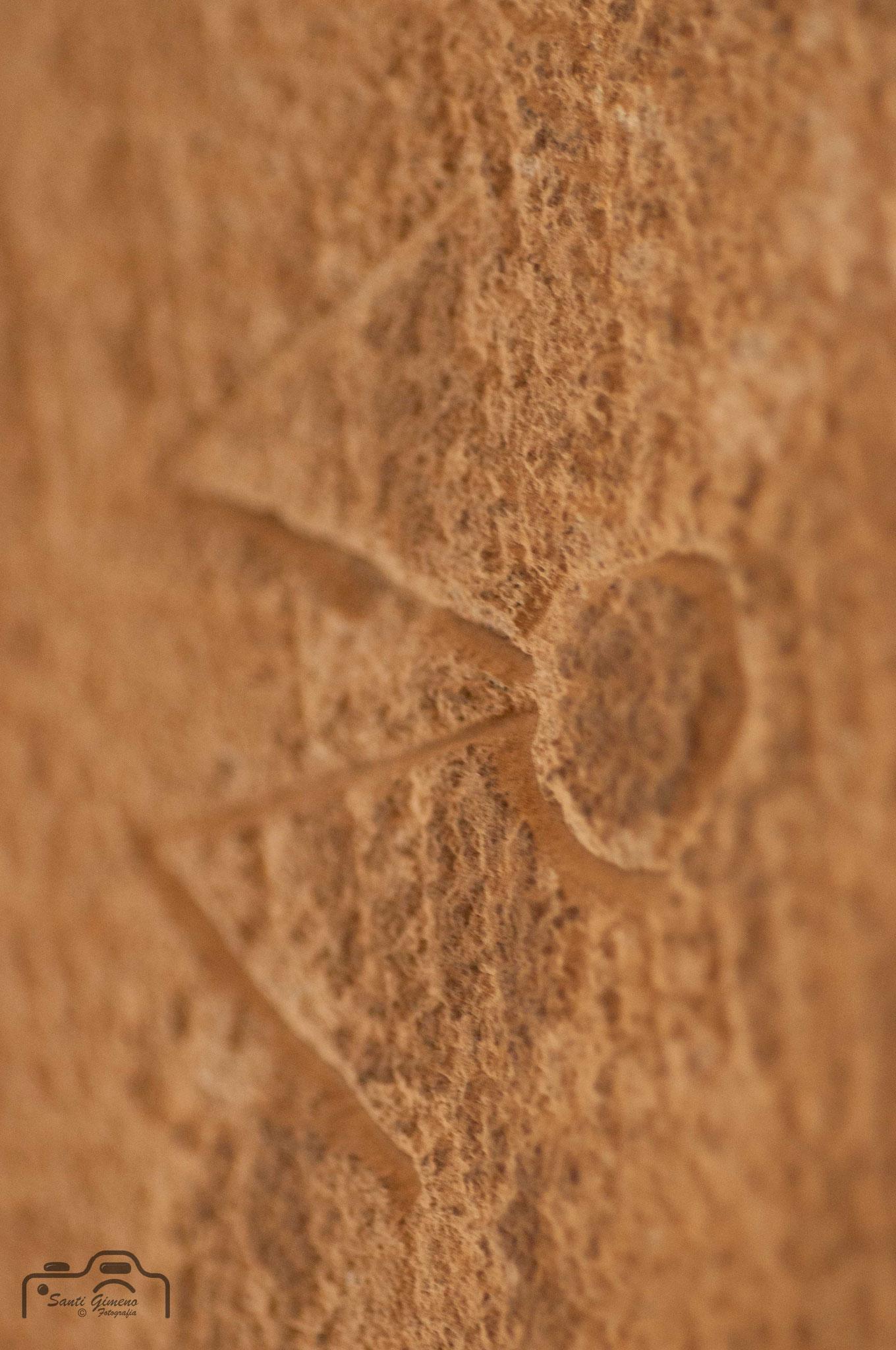 Marca de picapedrer
