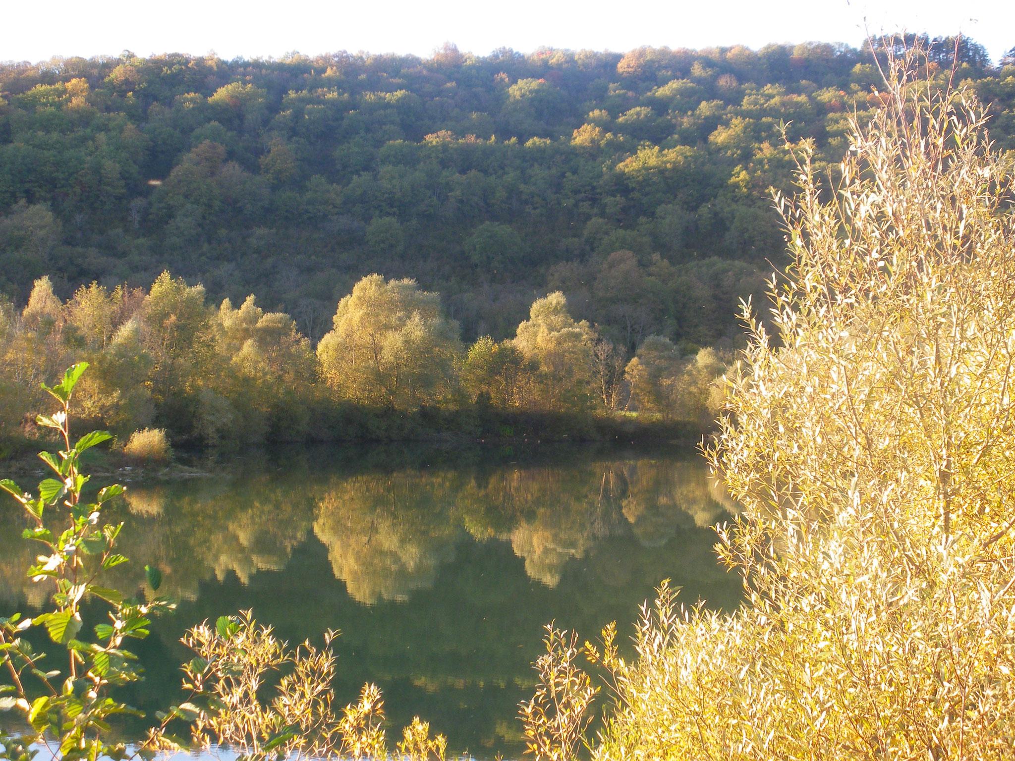 bassin de Prost à Osselle