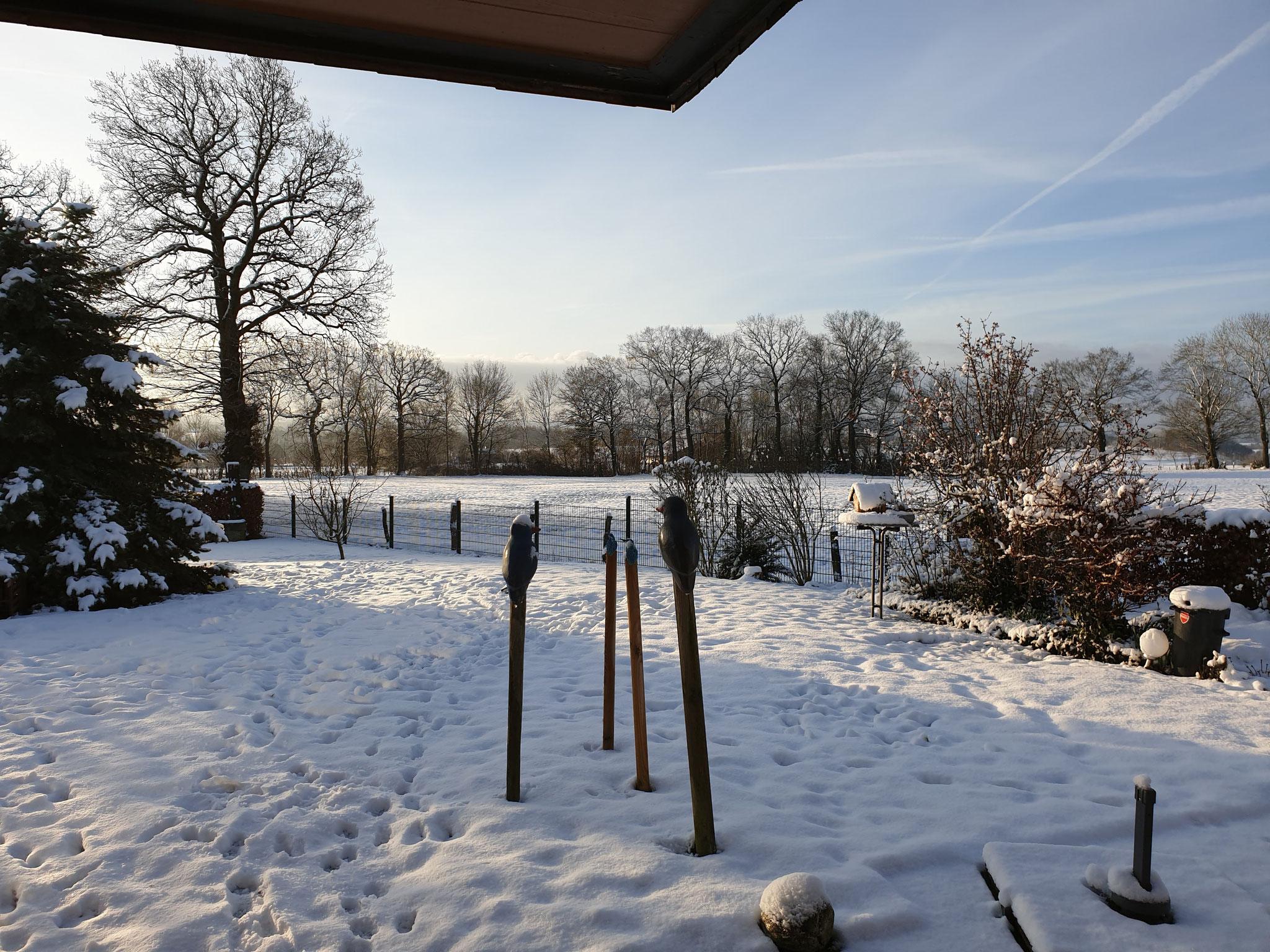 Etwas Schnee Anfang Februar