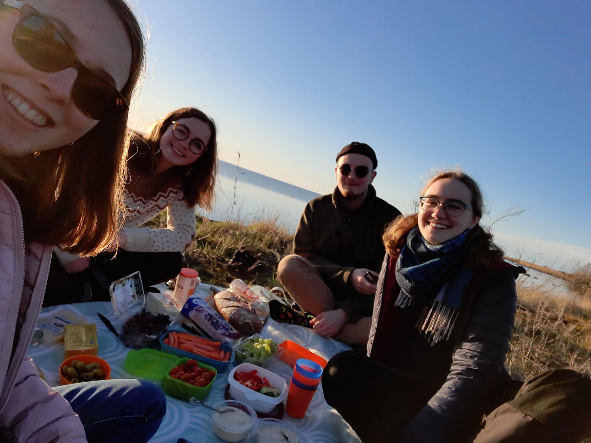 Picknick am Strand von Öland