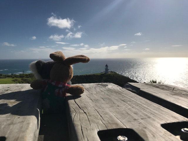 Am Ende der Welt - Cape Reinga