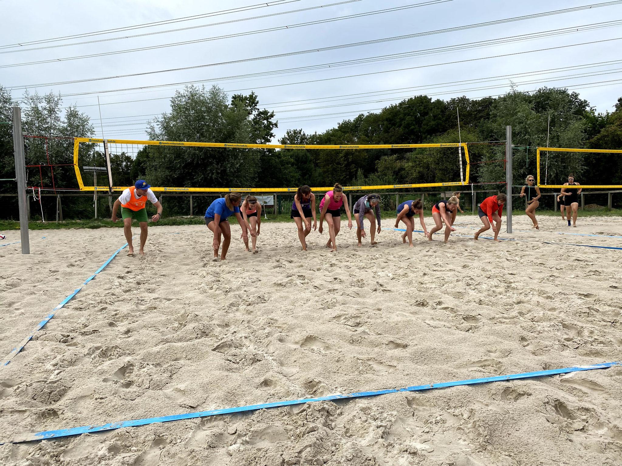Micha scheucht seine Damen durch den Sand