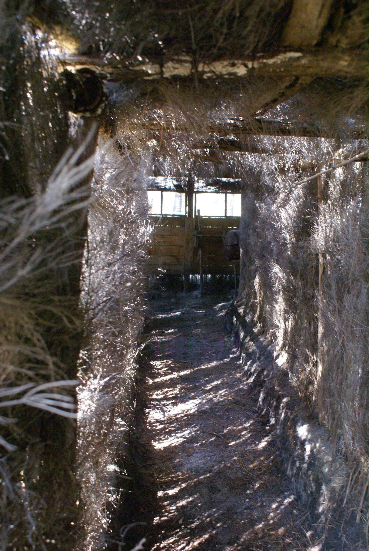 L'intérieur de la Palombière