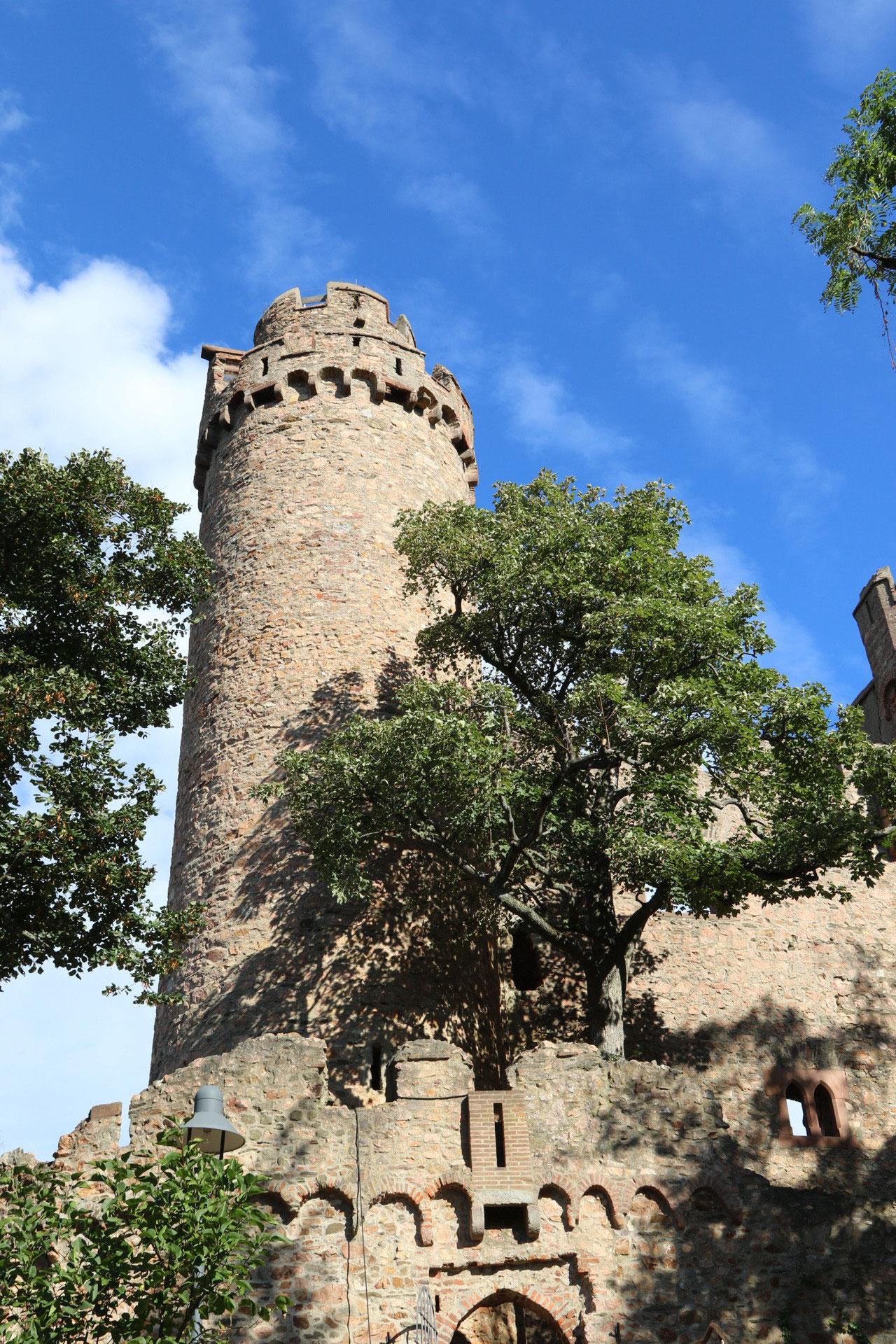wir erobern das Auerbacher Schloss