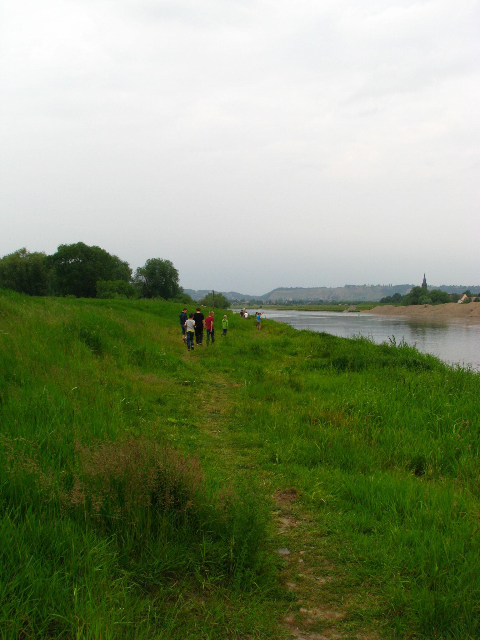 Hier an der Elbe