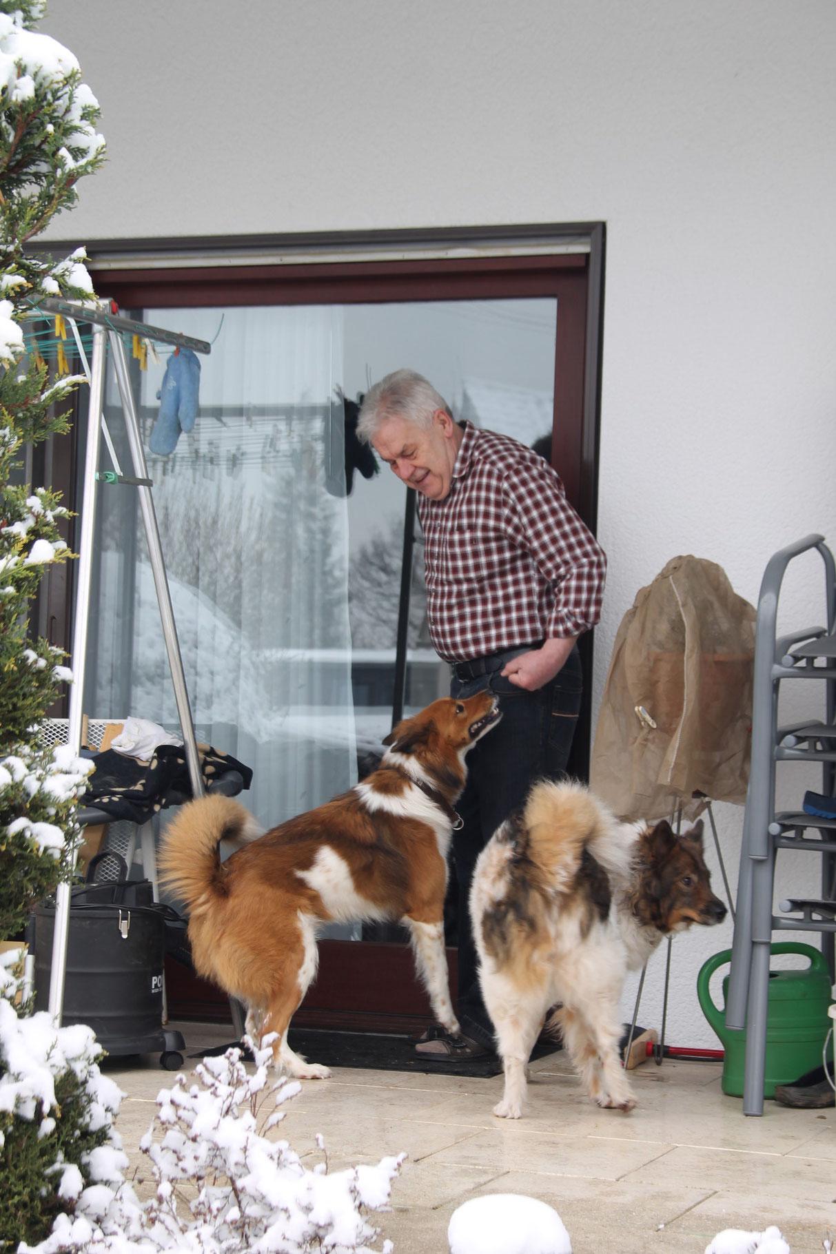 Für Binka ungewöhnlich, sooo viele Hunde in ihrem Garten