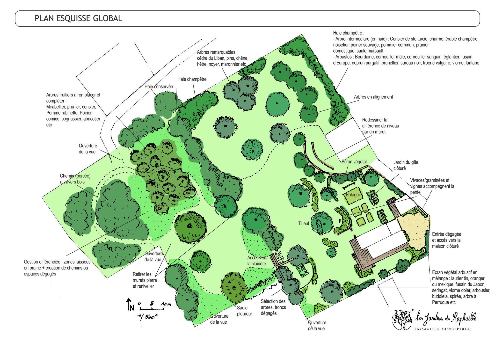 Plan esquisse terrain 1 ha