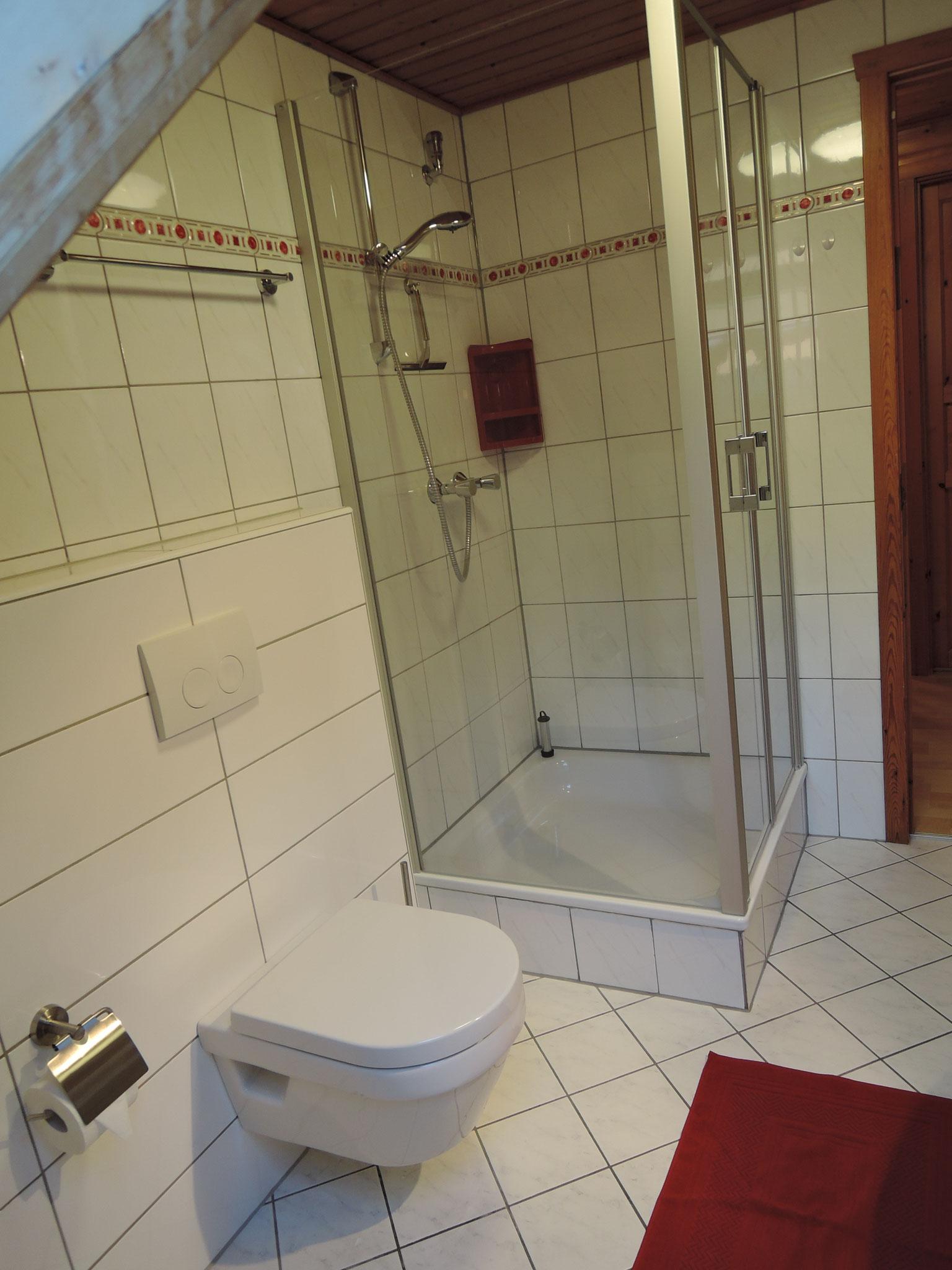 Duschbad im neuen Glanz