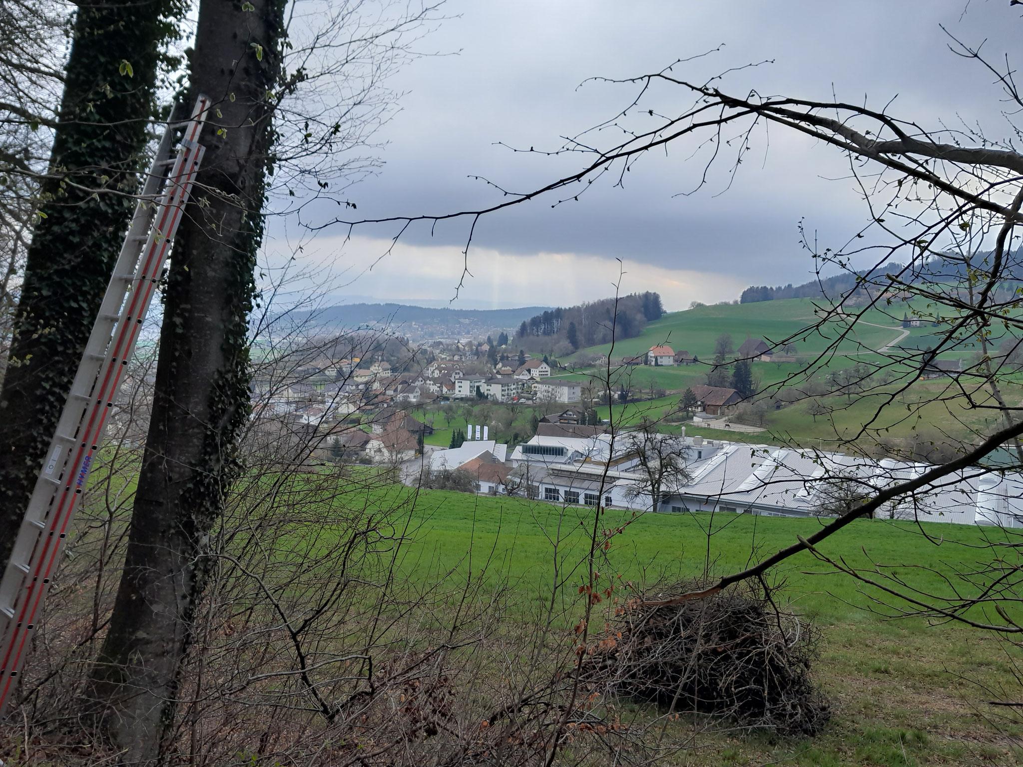 """Blick vom """"Gstüd"""" in Gontenschwil Richtung Reinach"""