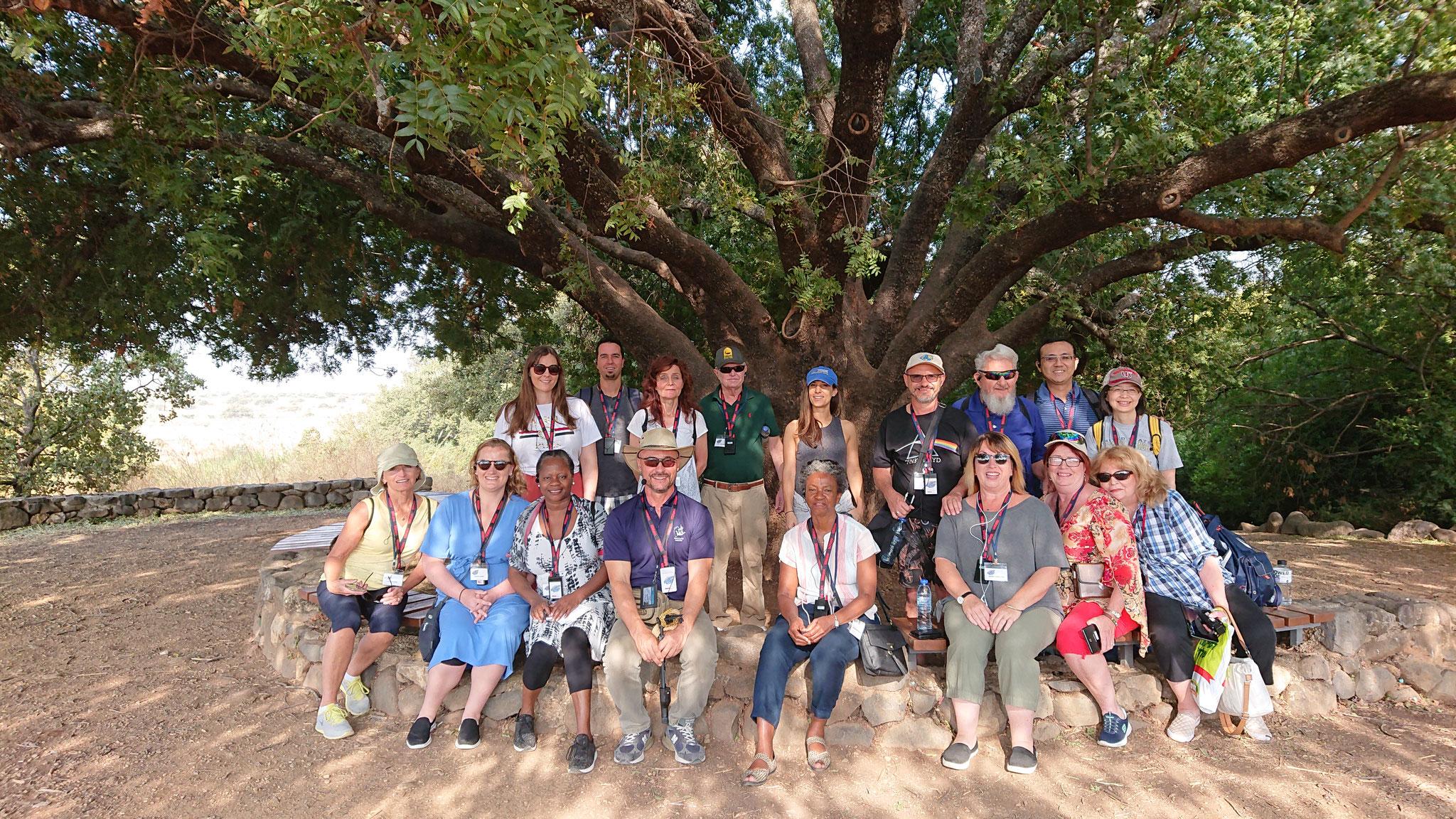 In Tel Dan National Park