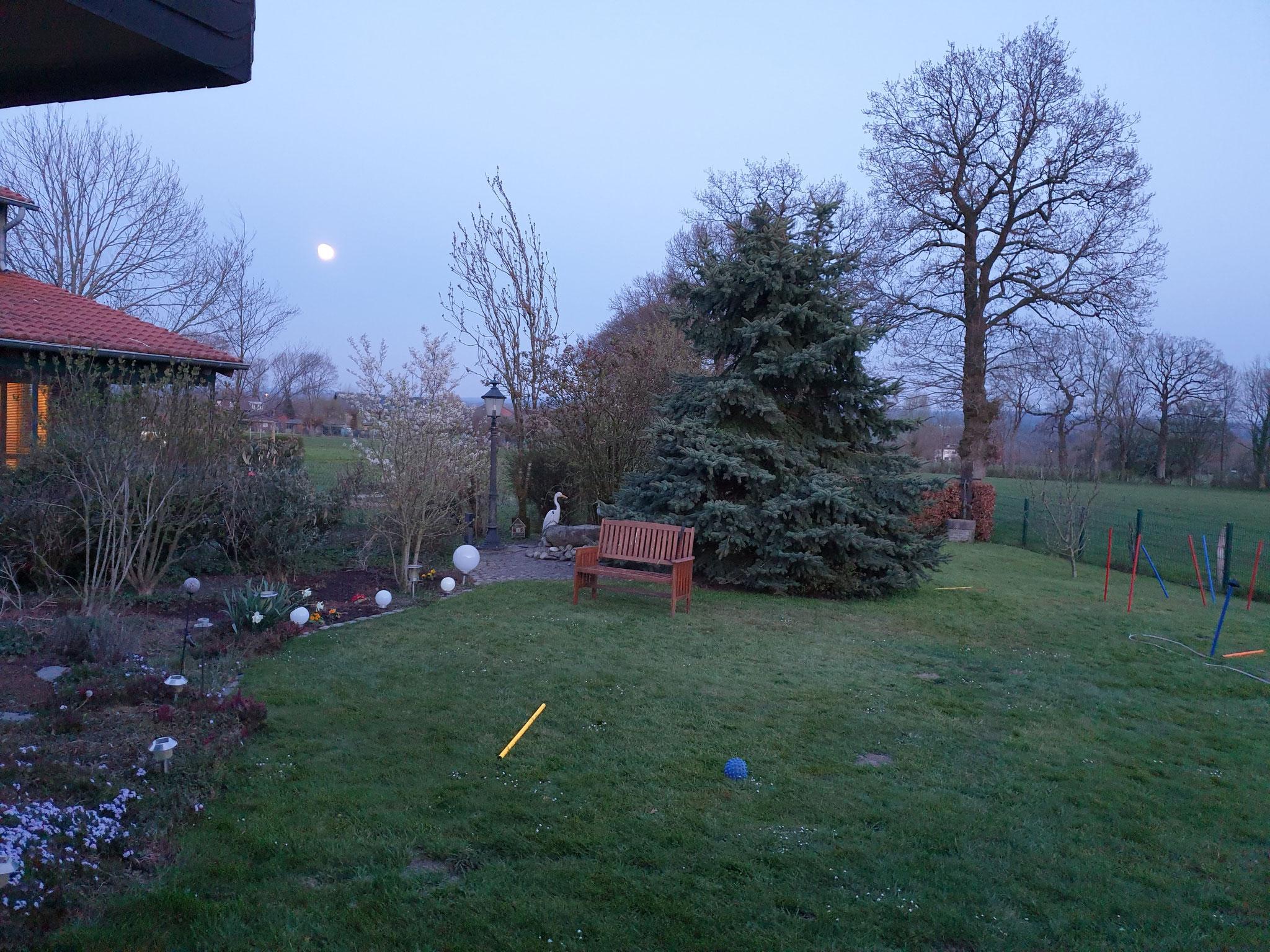 Blick auf den Garten am Maarweg