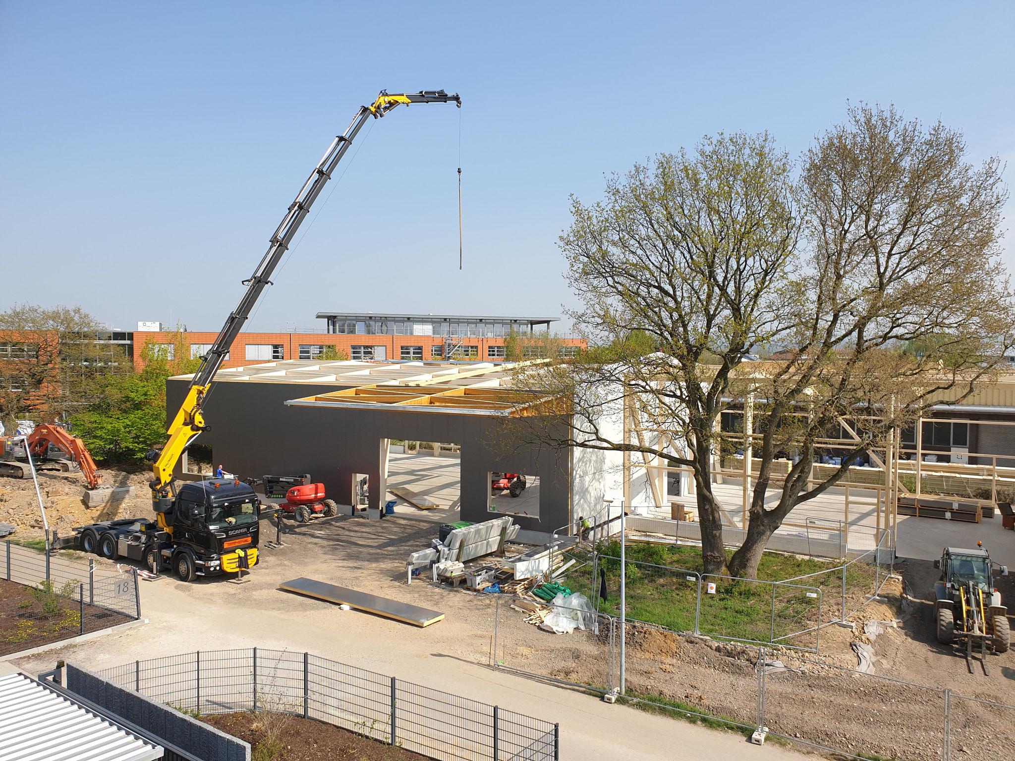 Bau der Halle Lipp nebenan