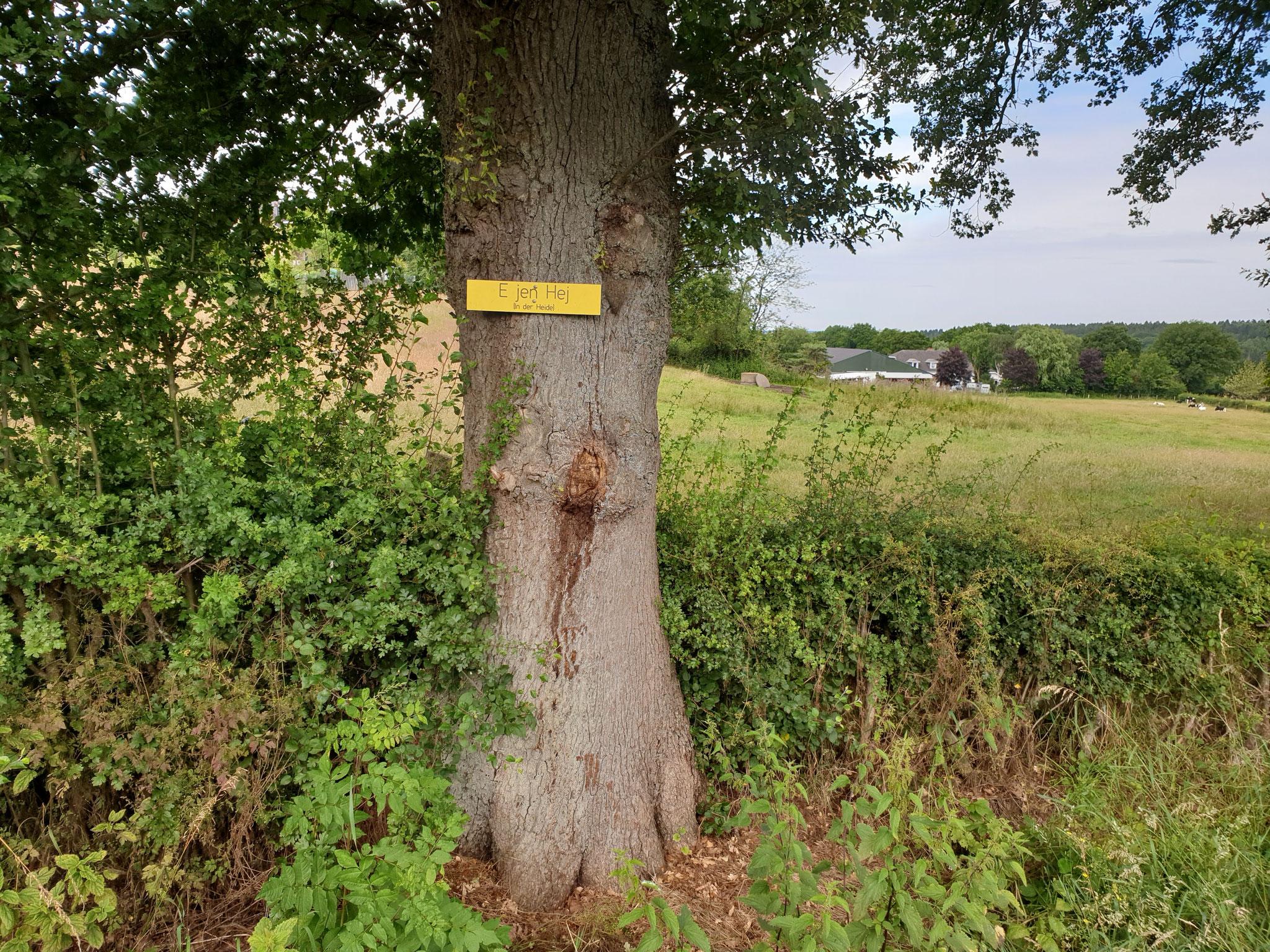 Heide, wo Reinhard und Hülya wohnen