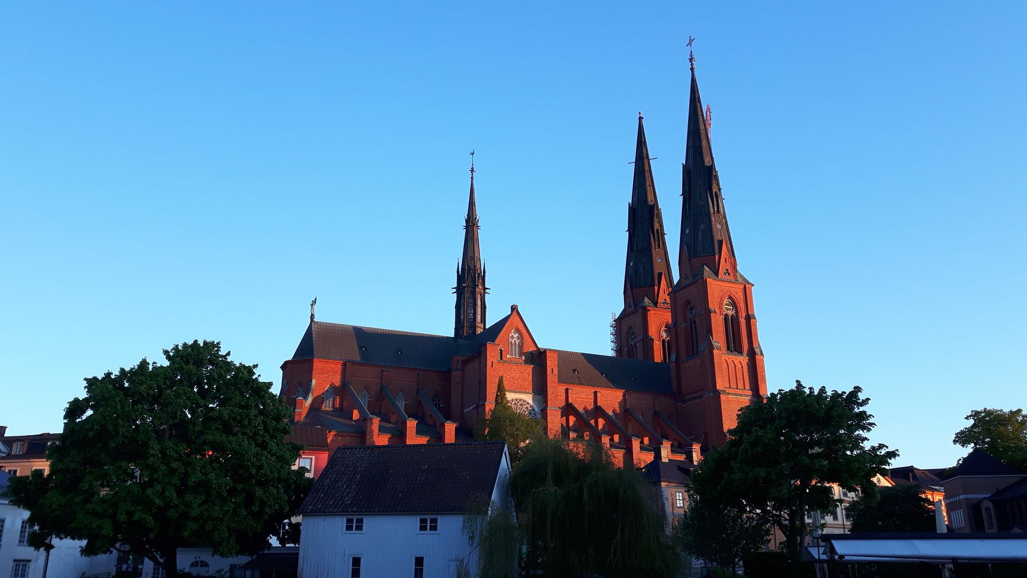 Dom von Uppsala im Abendlicht