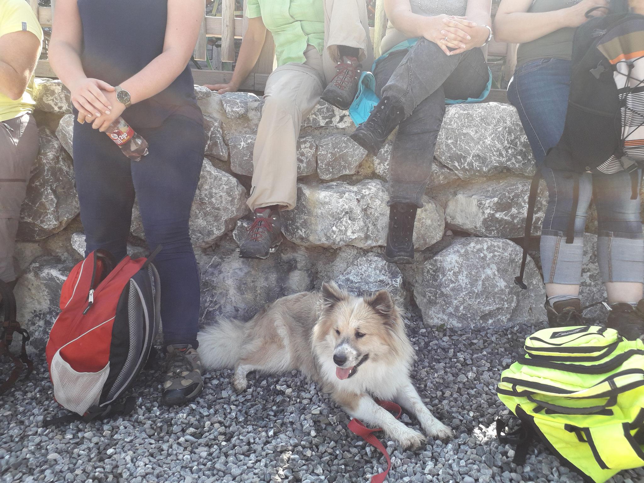 Bergtour mit dem KiGa-Team
