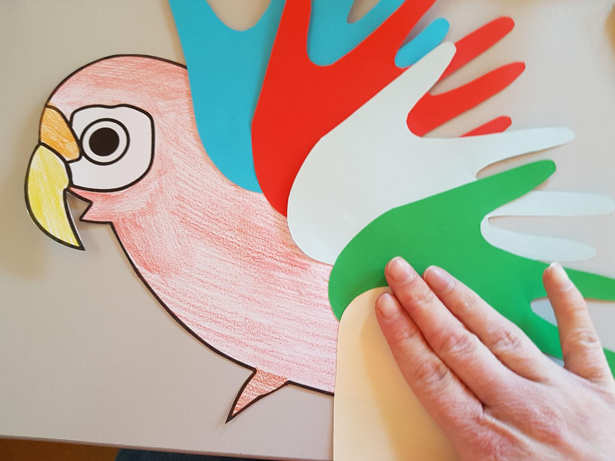 ...die letzte Hand klebst du dem Papagei auf den Bauch...