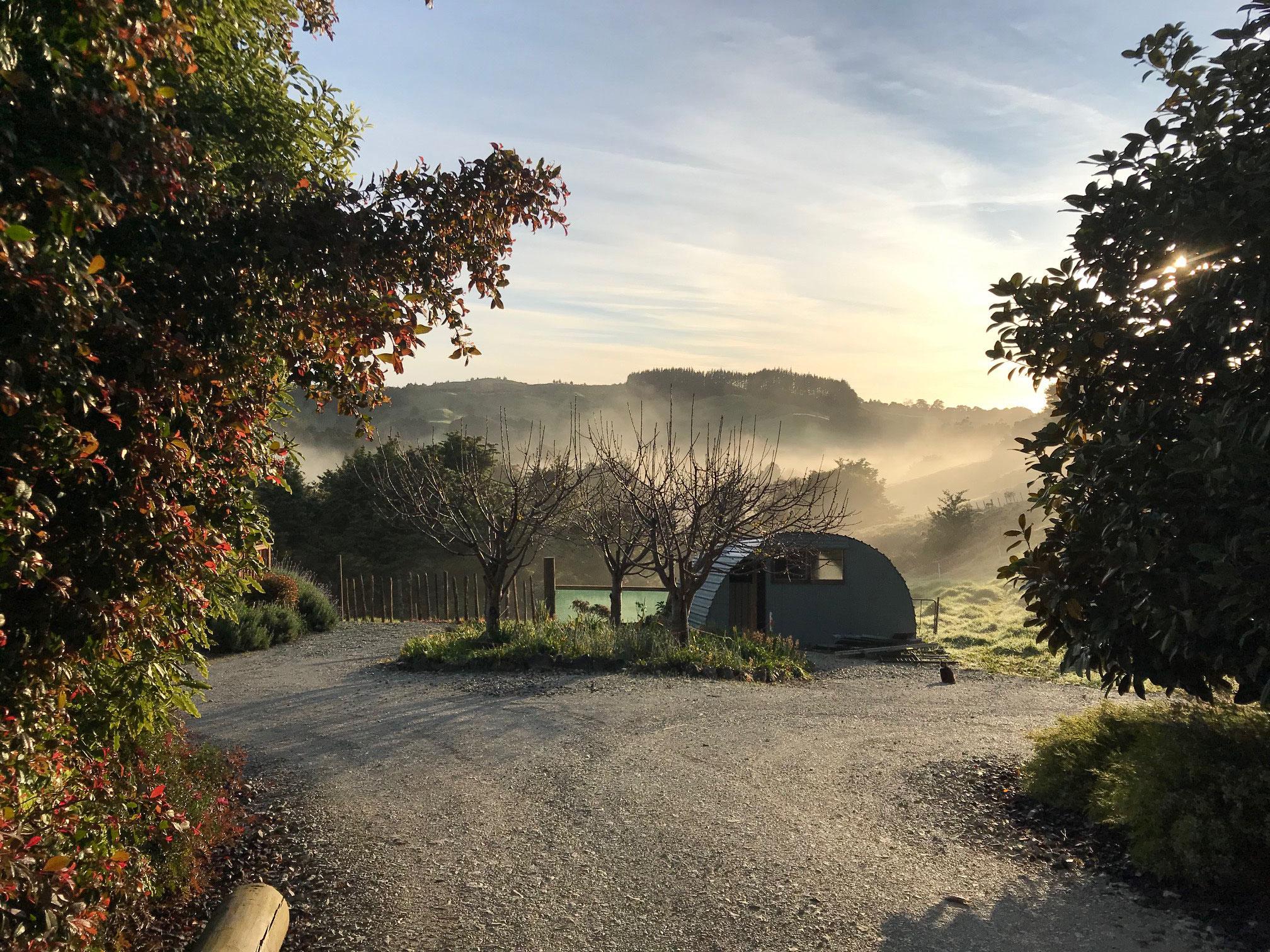 Good Morning New Zealand