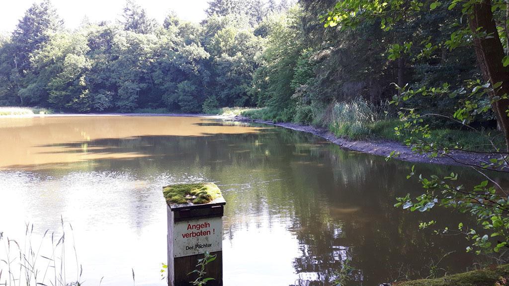 Dieser See scheint auszutrocknen, wie vieles in der Natur...