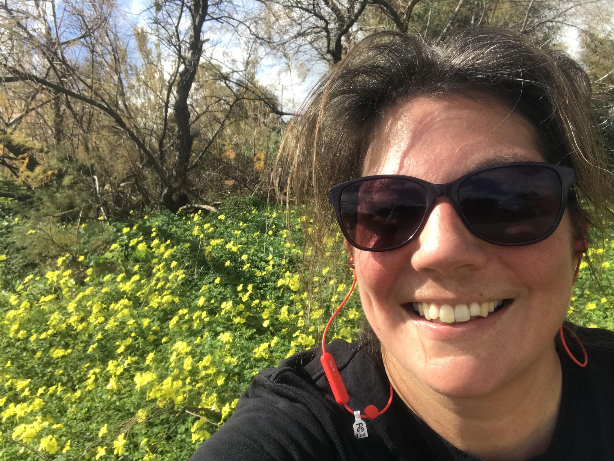 der Frühling (zumindest bis Mitte März) / Spring (at least until mid march)