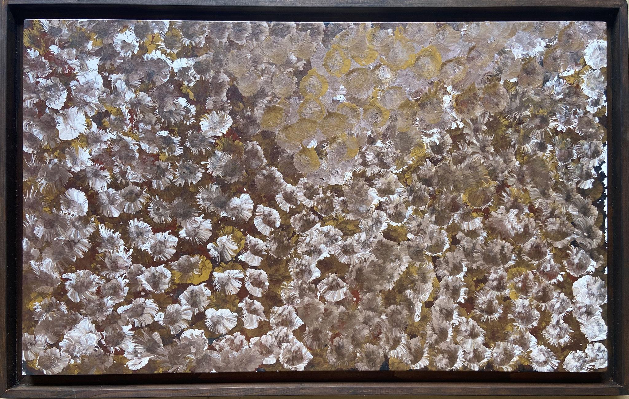 エミリー・カーメ・ウングワレー 「マイ・カントリー」 550x910mm