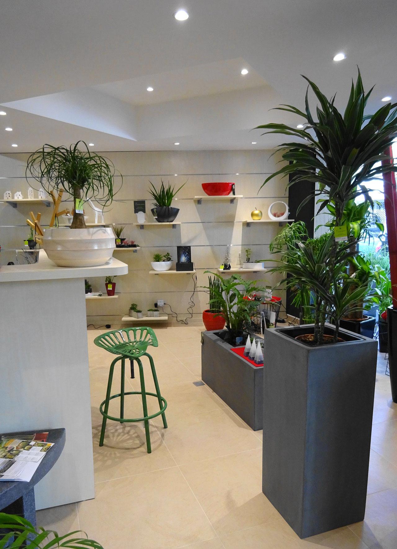 envie d 39 un coin de nature en ville pocket gardens. Black Bedroom Furniture Sets. Home Design Ideas