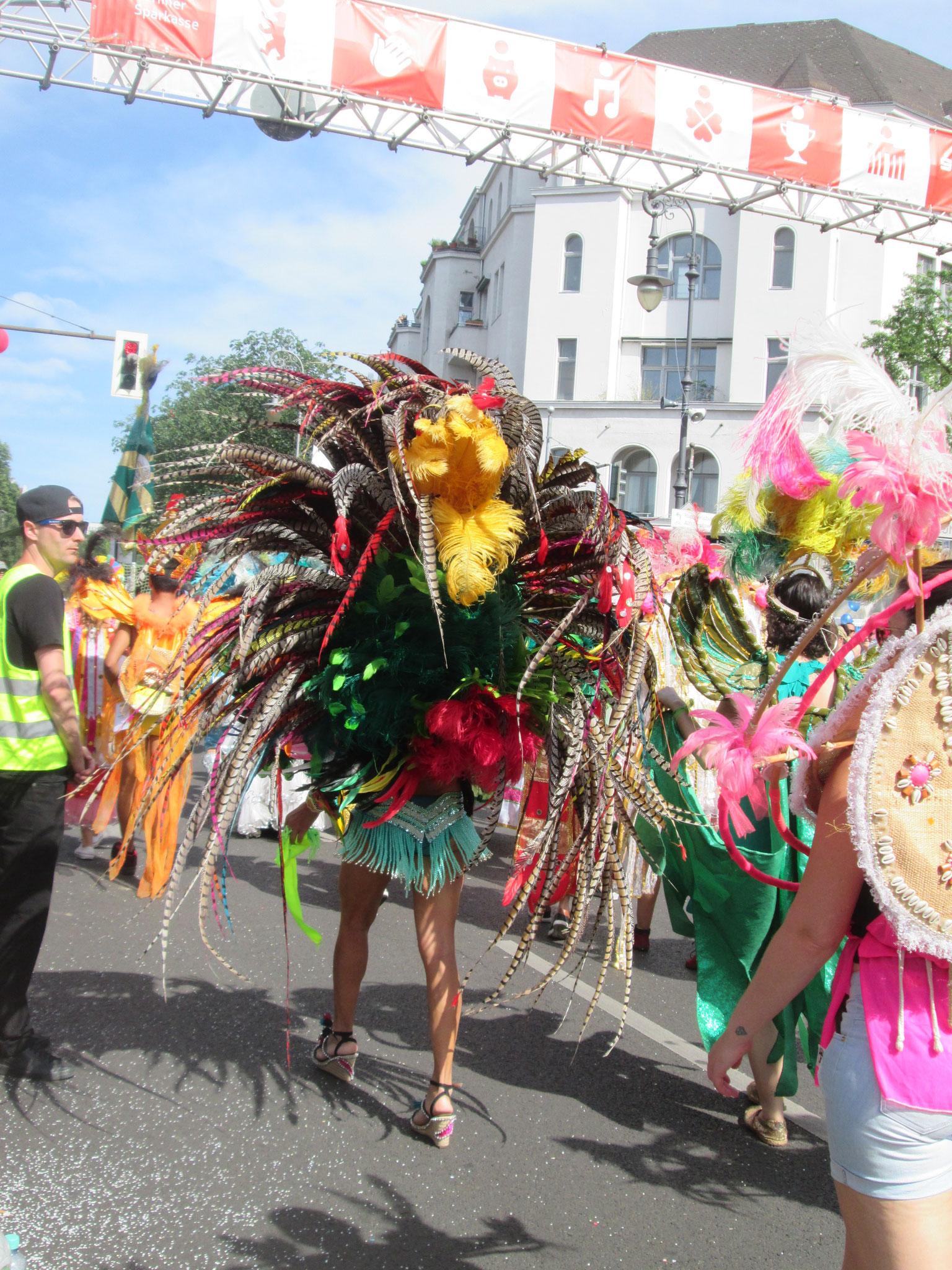 Amazonia, hier löst sich auch die letzte Spaßbremse und rast mit Karacho in den Karnval