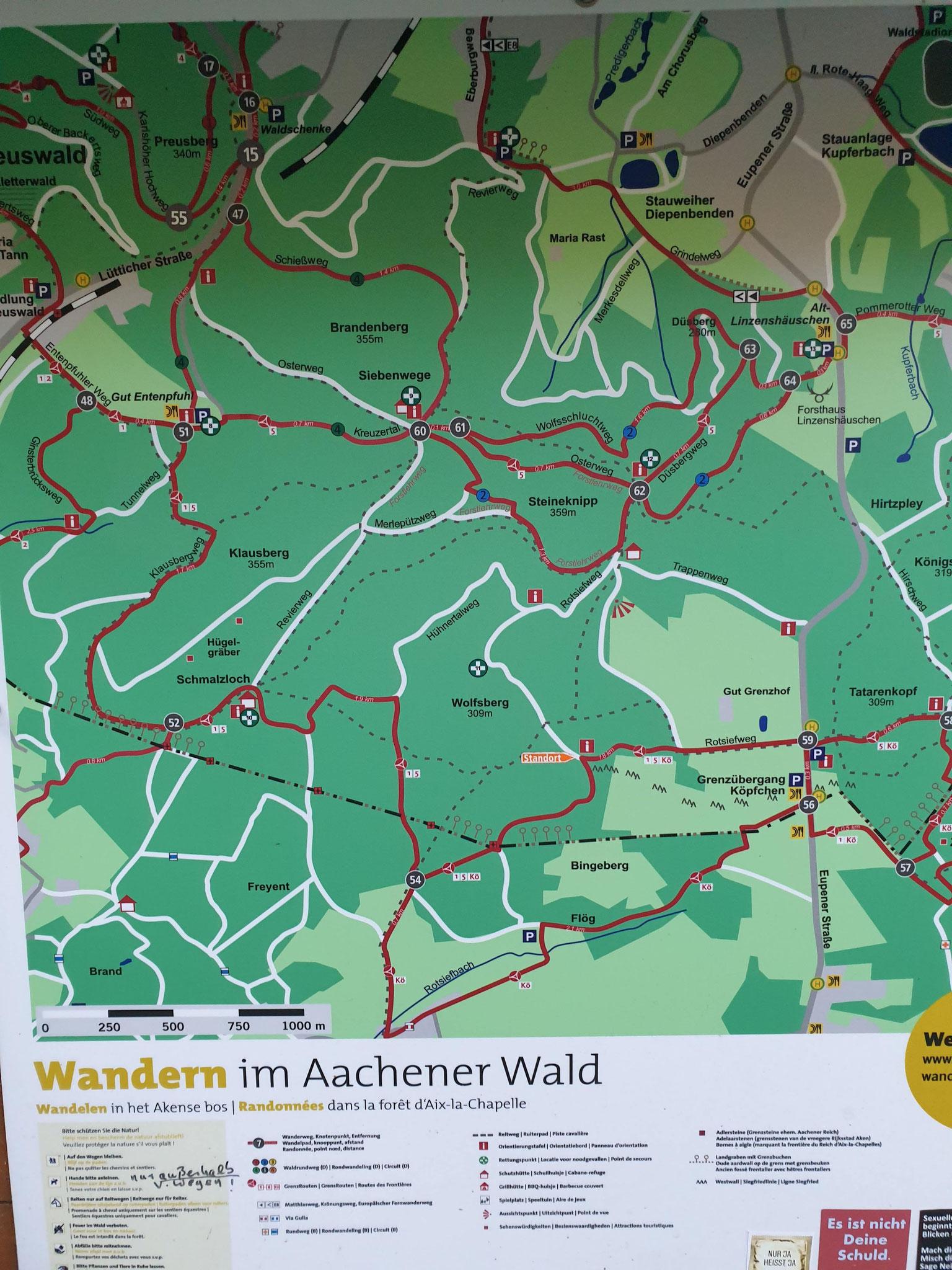Aachener Wald am Landgraben bei Köpfchen