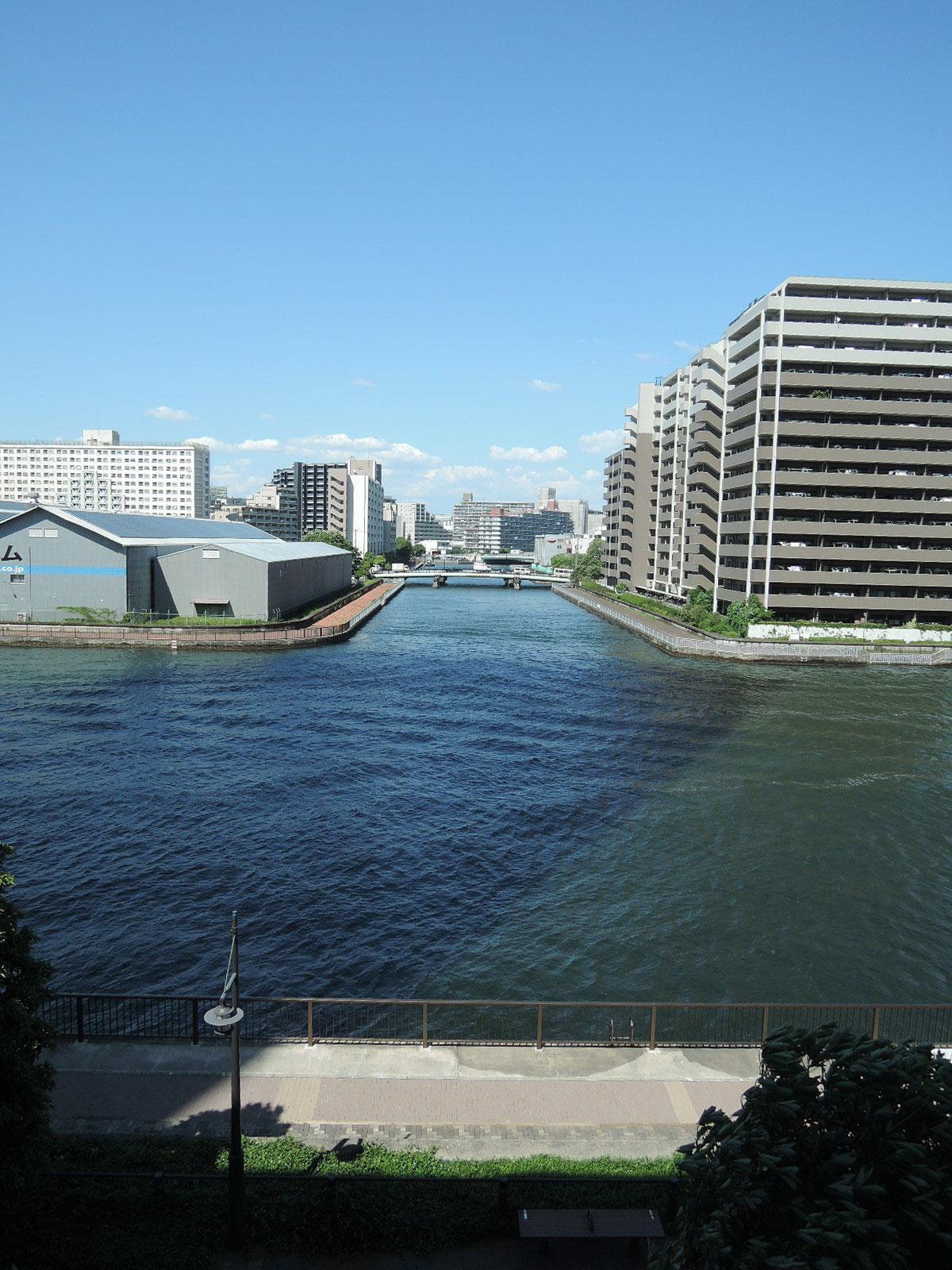 豊洲運河が望めます