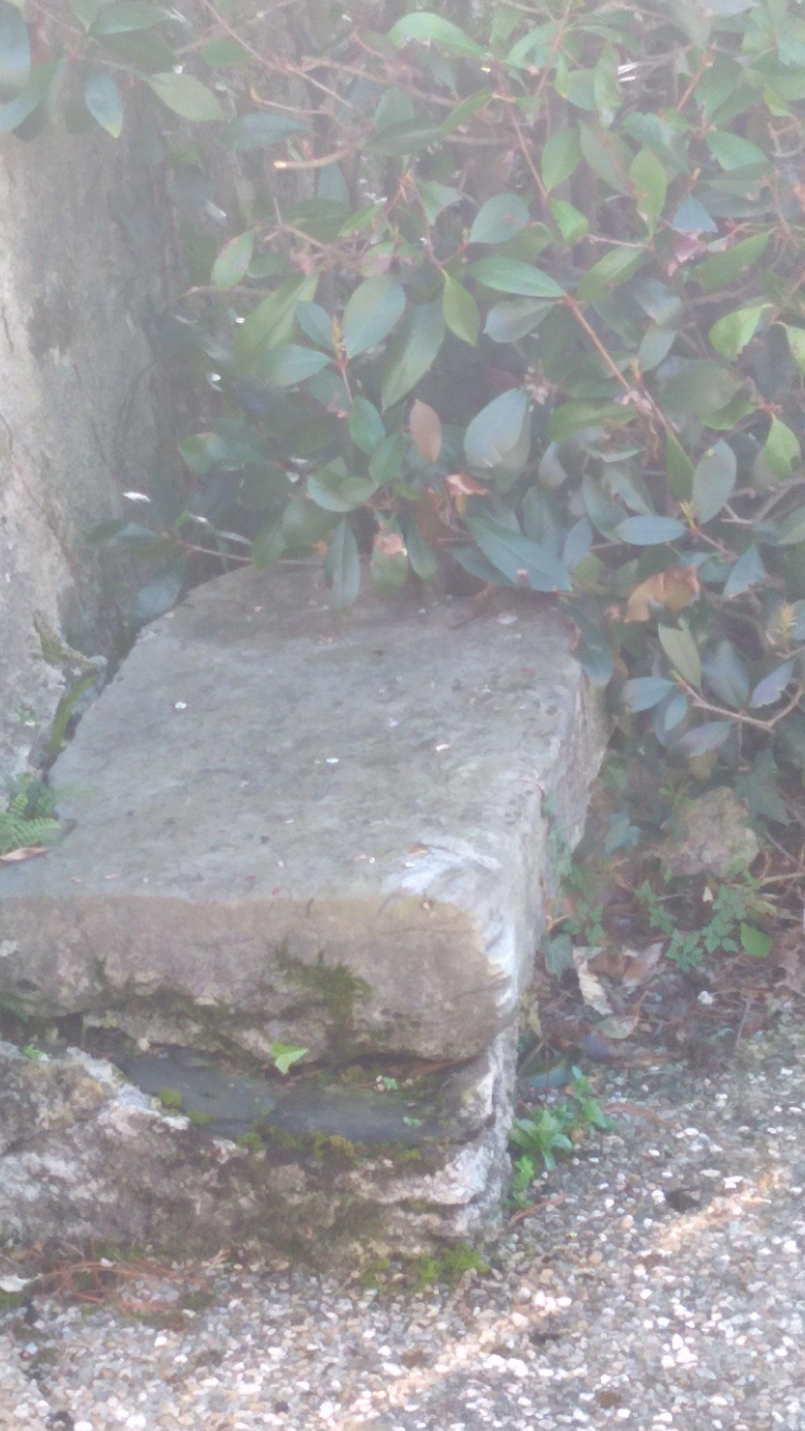 une simple pierre surélevée , à l'époque , il n'y avait pas la haie actuelle