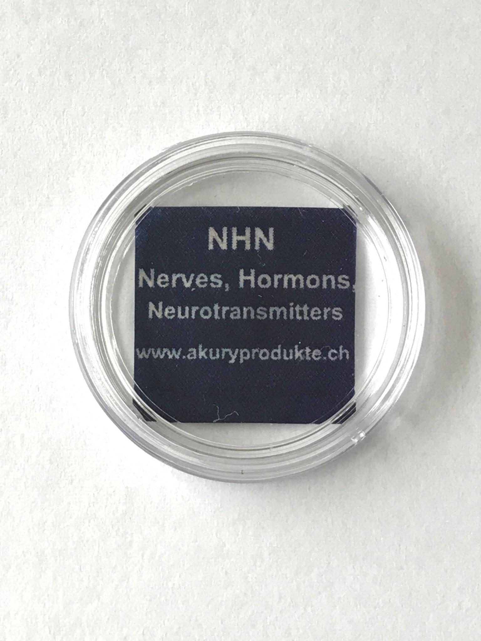 神経、ホルモン、神経伝達物質