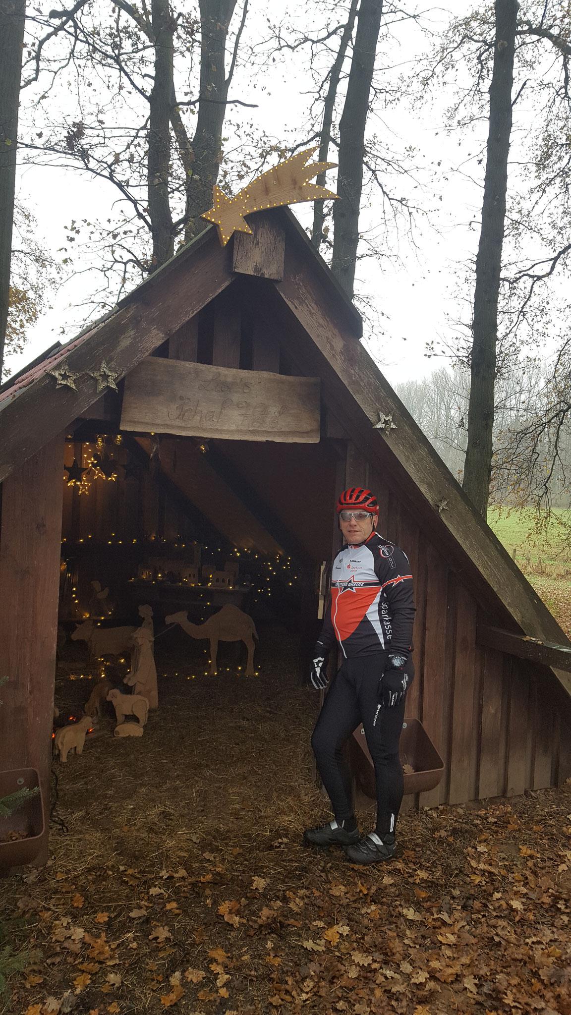 Weihnachtskrippe Salzbergen-Hummeldorf