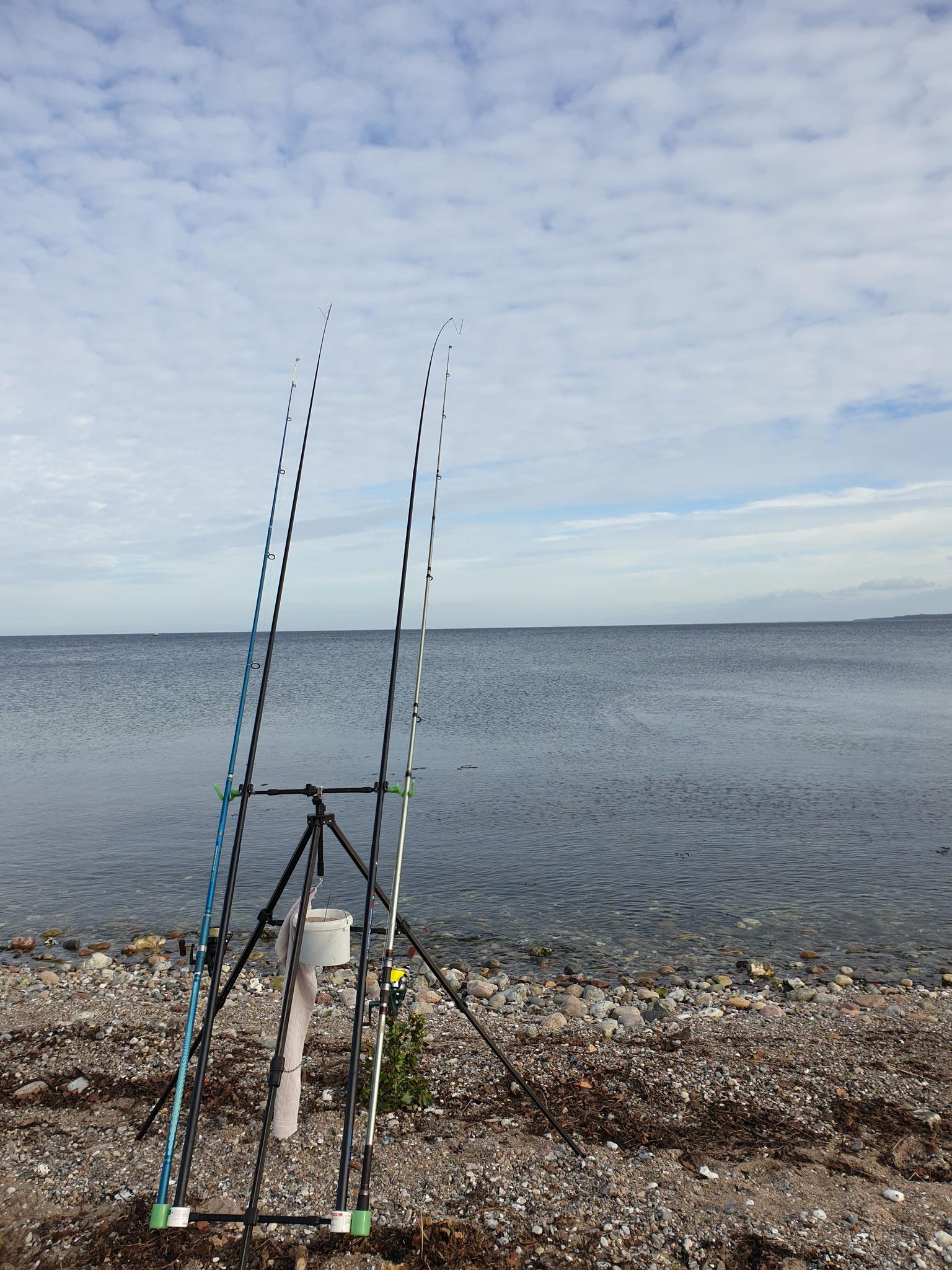 Aufgebaut ist, jetzt müssen nur noch die Fische beissen.