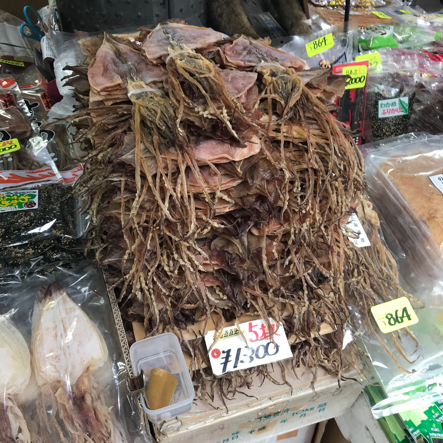 Plattgedrückte Tintenfische - exotisch aber lecker!