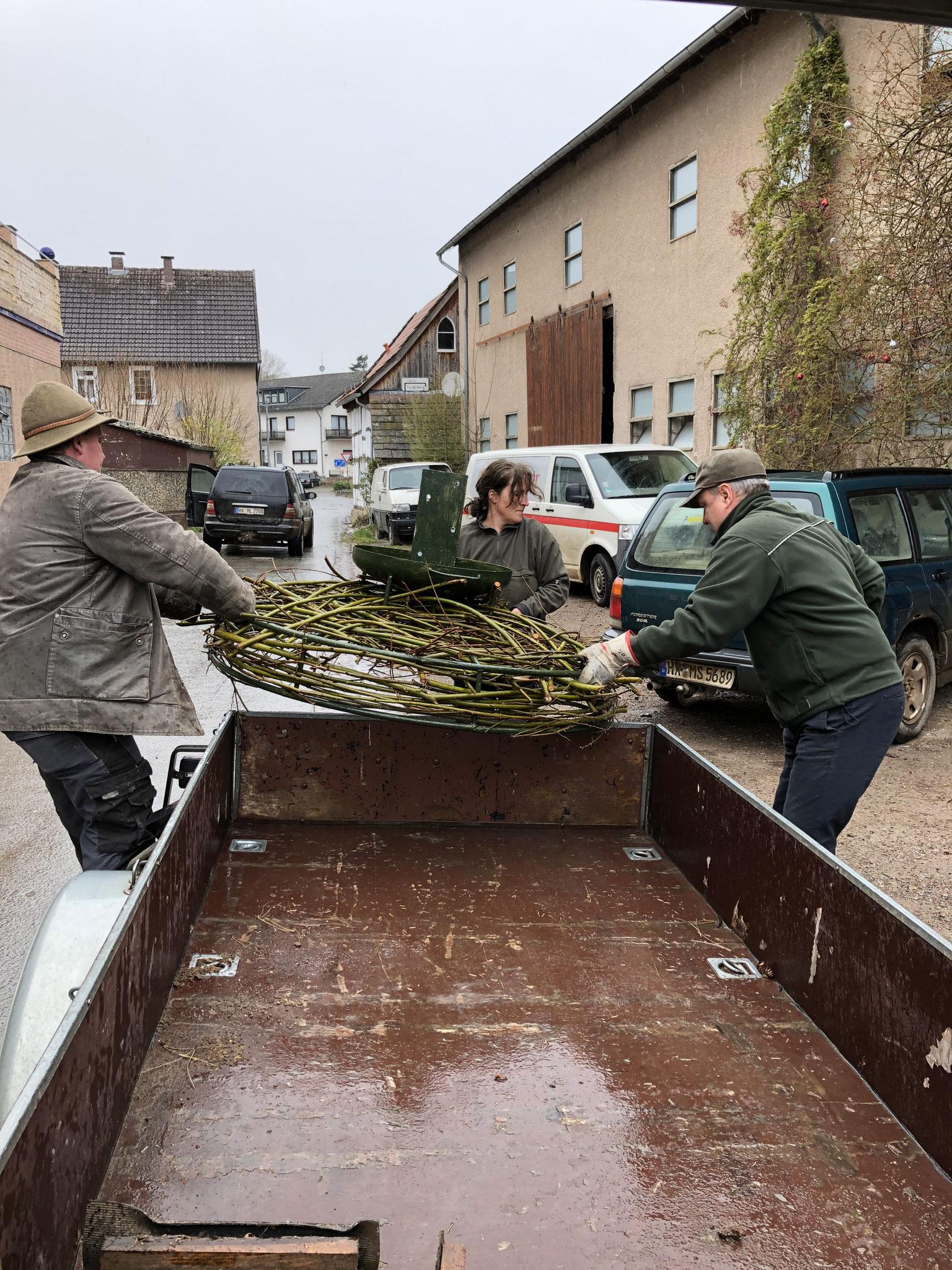 Abladen des Storchennestes in Wehrden bei Familie Schrick, auf dessen Land das Nest zwischen Wehrden und Blankenau an der Weser errichtet wurde.