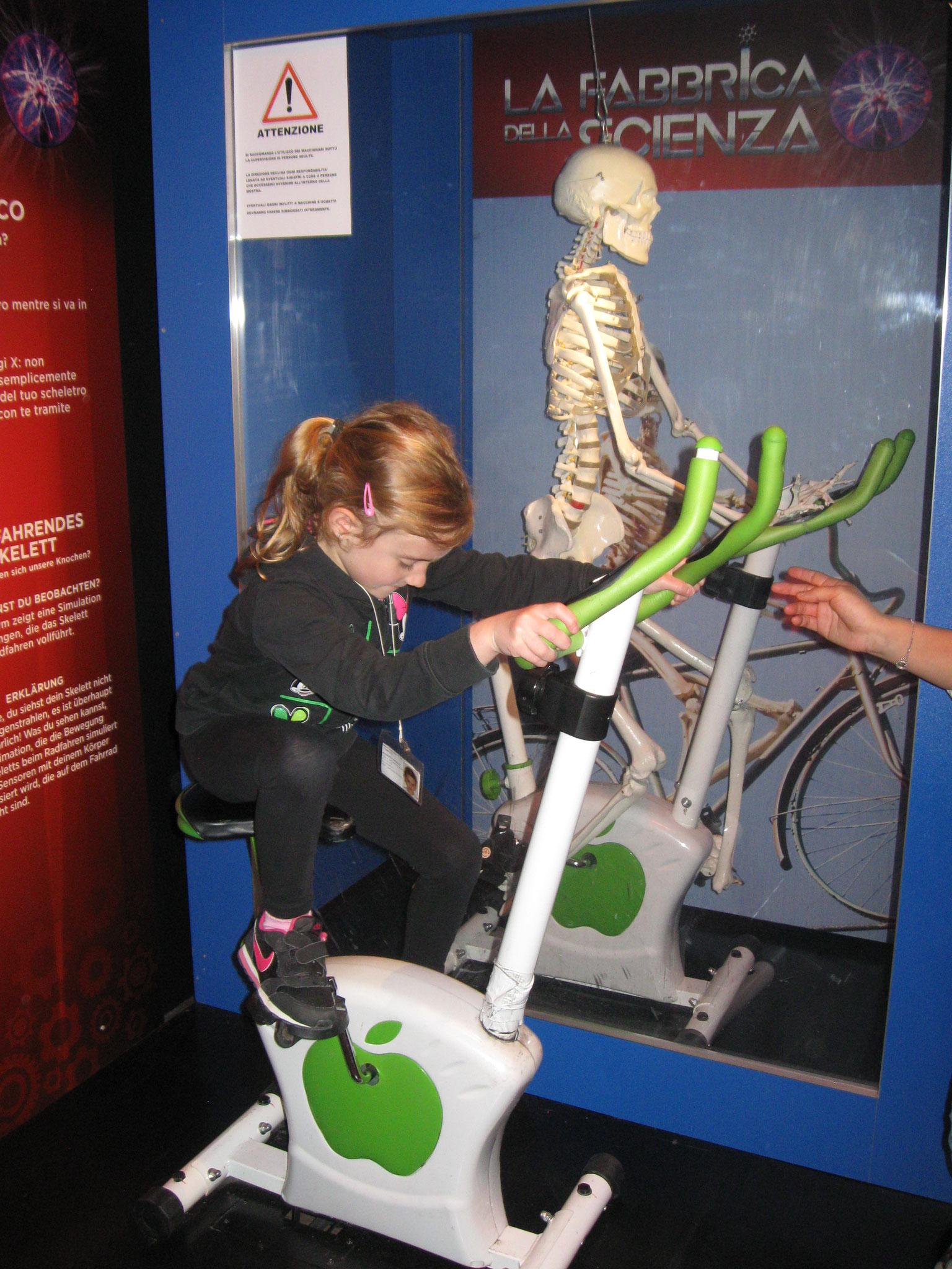 Ciclista scheletrico: come si muovono le nostra ossa?
