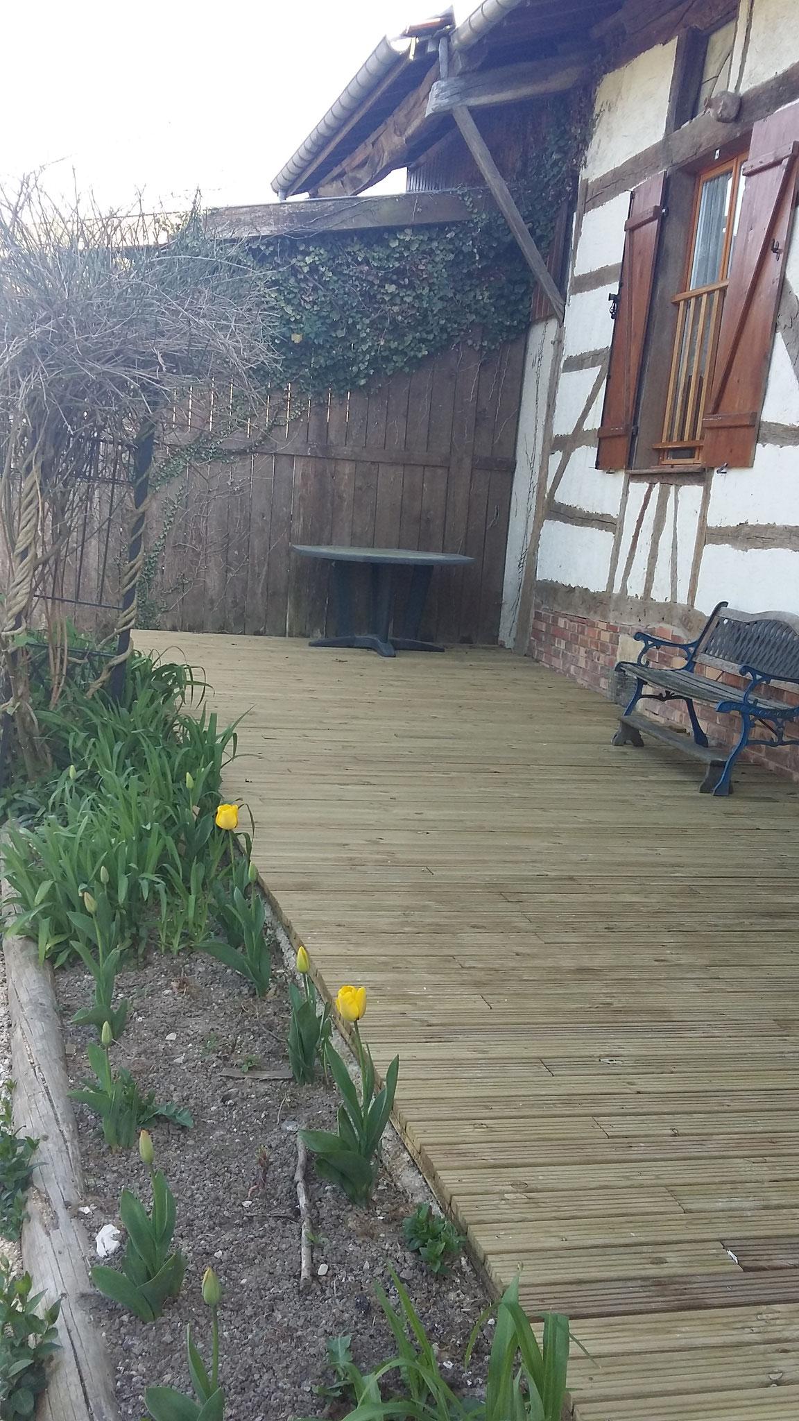 Les premières tulipes - gîte en Argonne