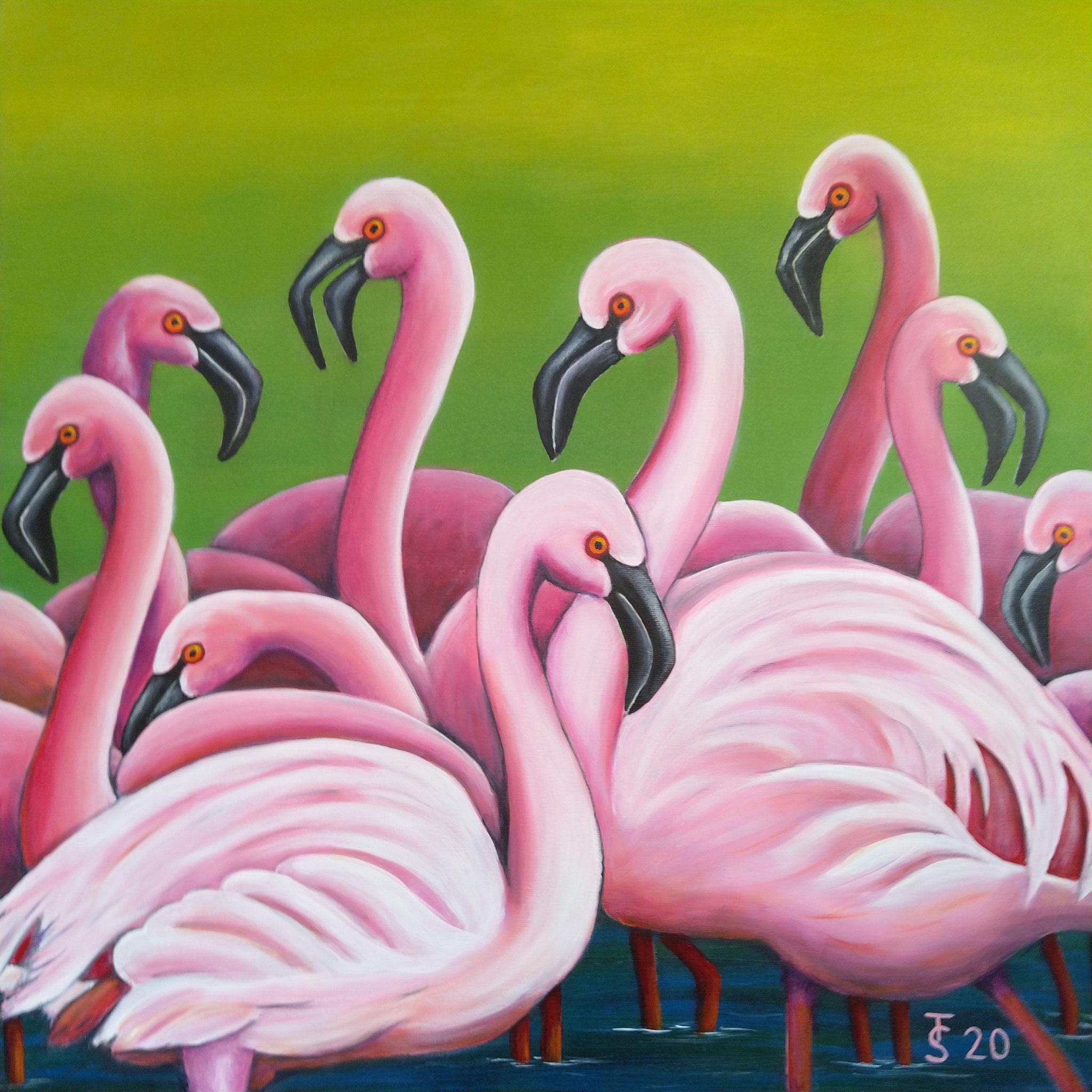 Flamingos  _  (Acryl auf Leinwand, 70 x 70 cm)