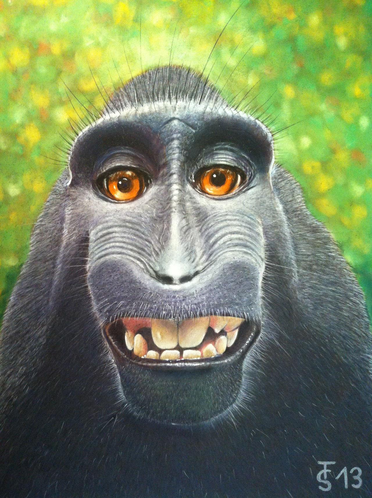 Bitte lächeln  _    (Pastellkreide, 50 x 65 cm)