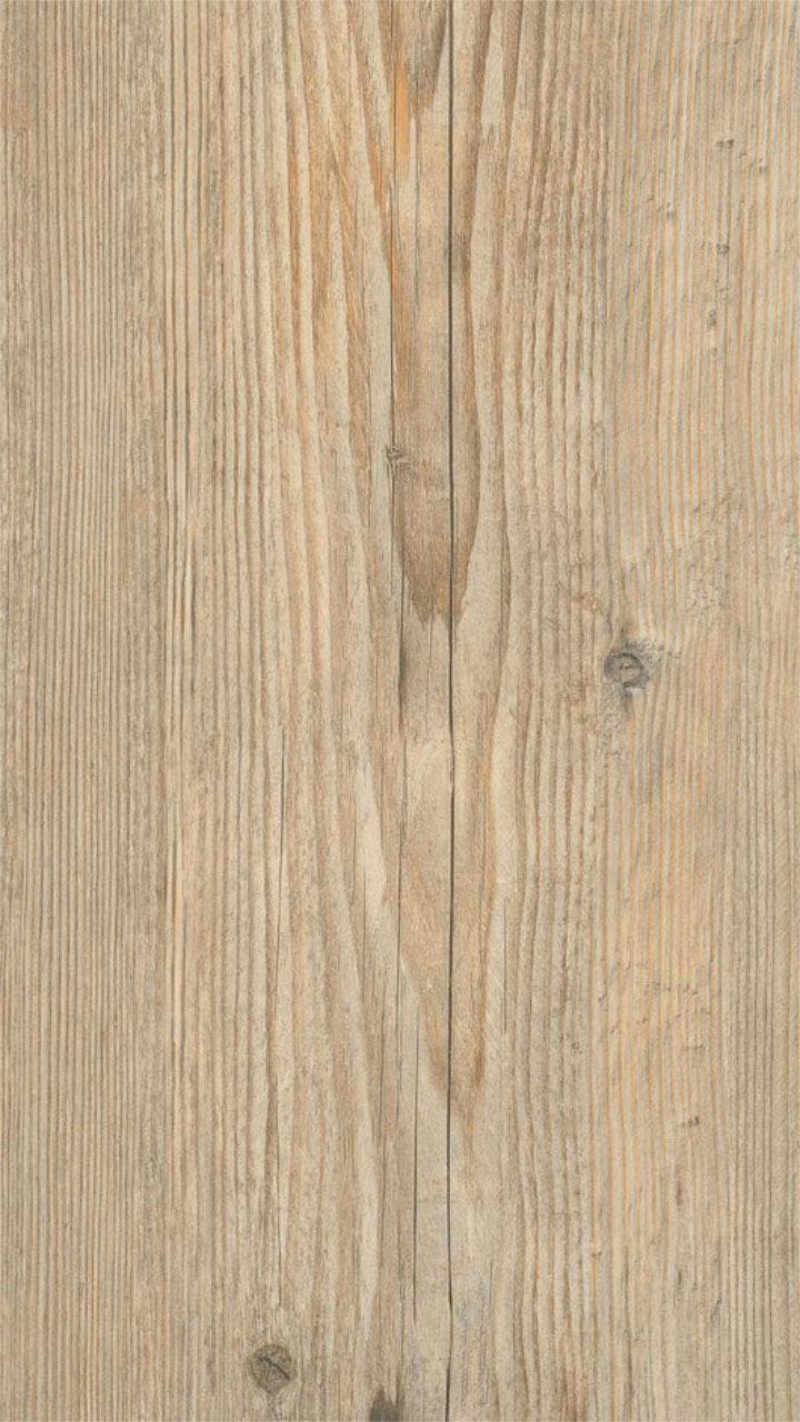 Ascona Pine Nature