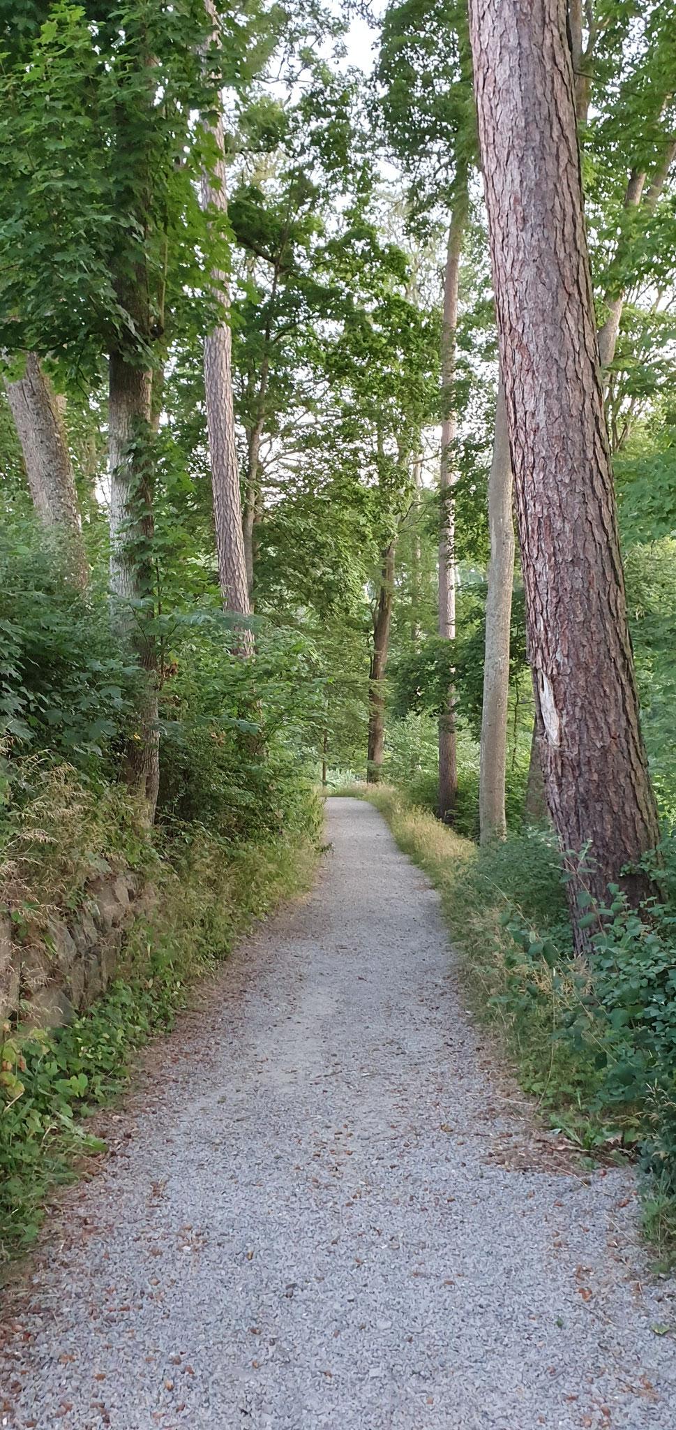 Schlosspark Impressionen