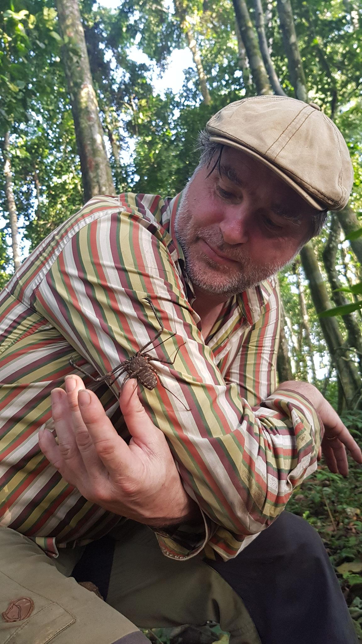 Eine Whip Spider ohne Berührungsängste © Tania Escobar