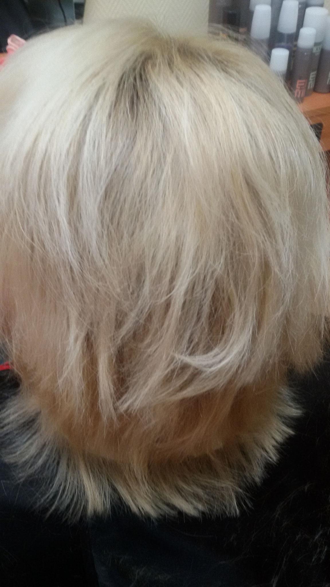 Ein stark strapaziertes Haar vor ...
