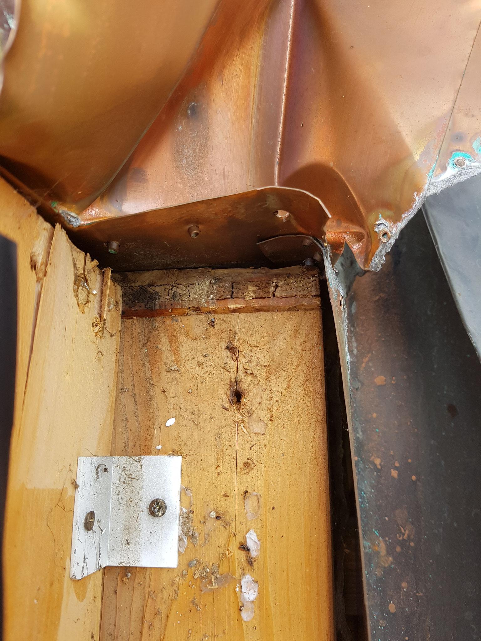 beschädigtes Holz aufgrund von Undichtigkeit