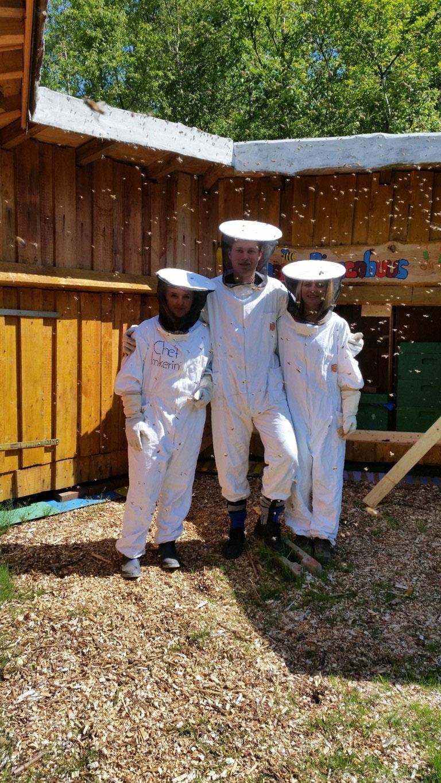 Bei den Bienen...
